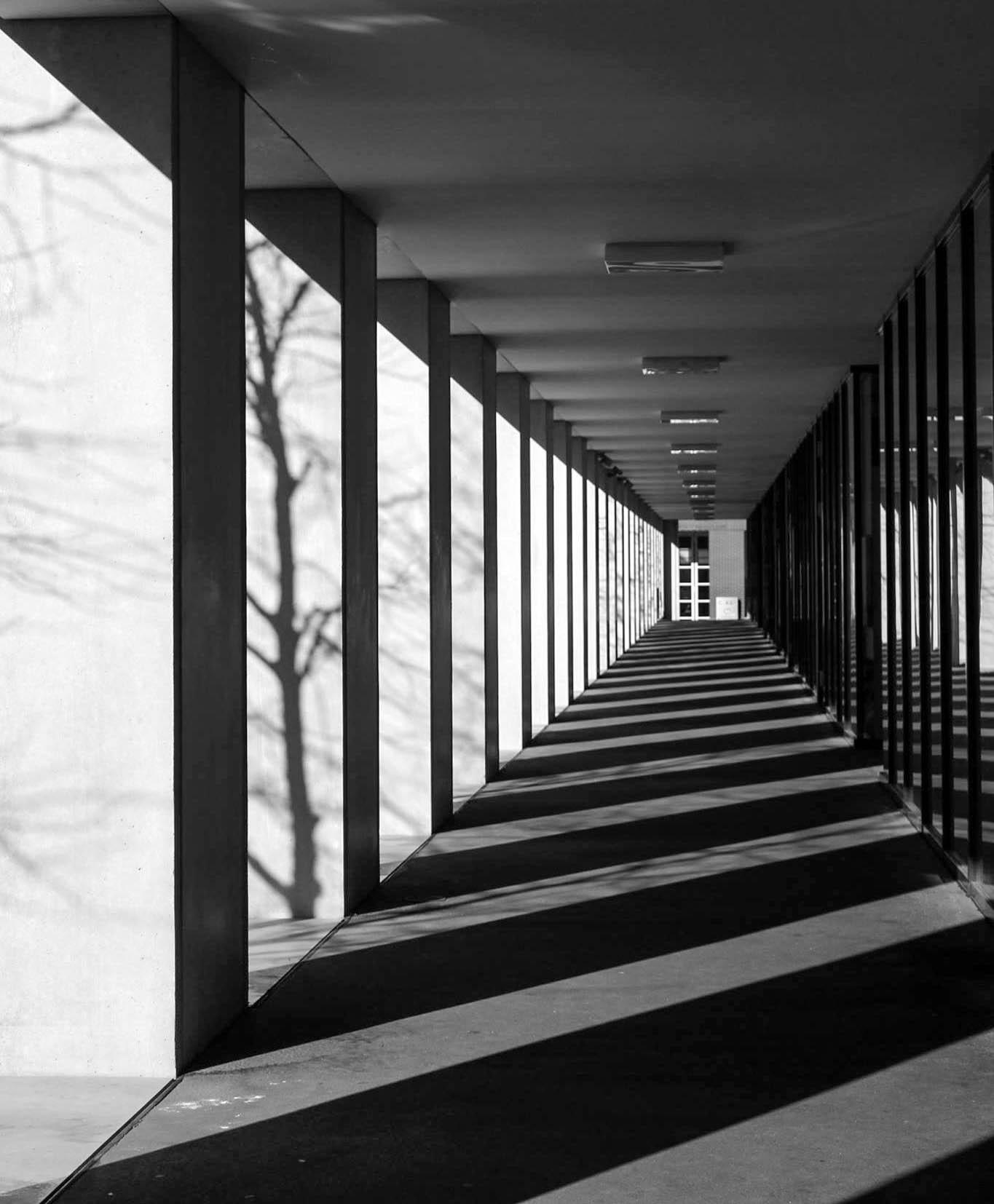 Break in the Shadows by advontage