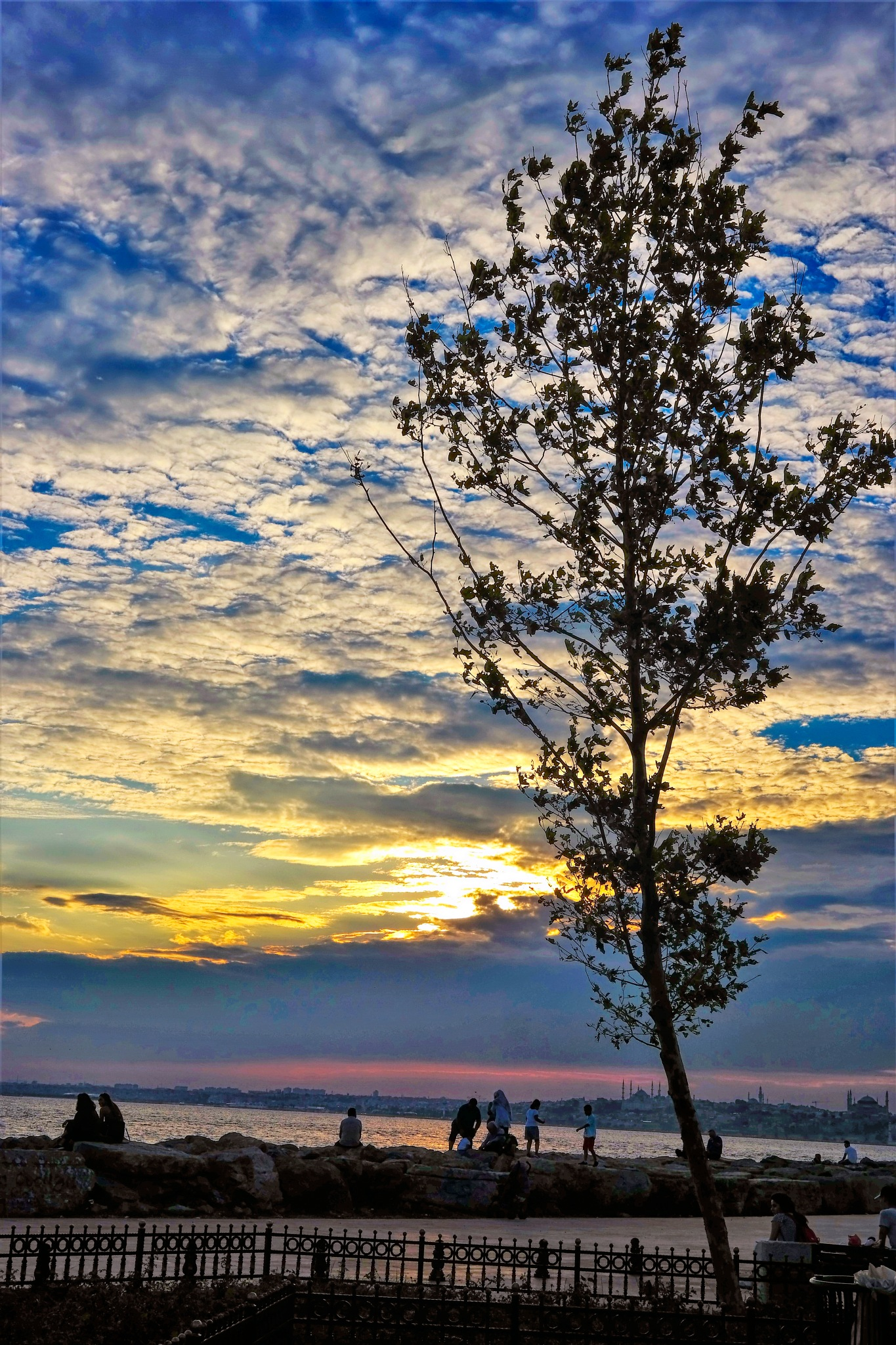 the tree and people by the sea by Muhsin Özcan