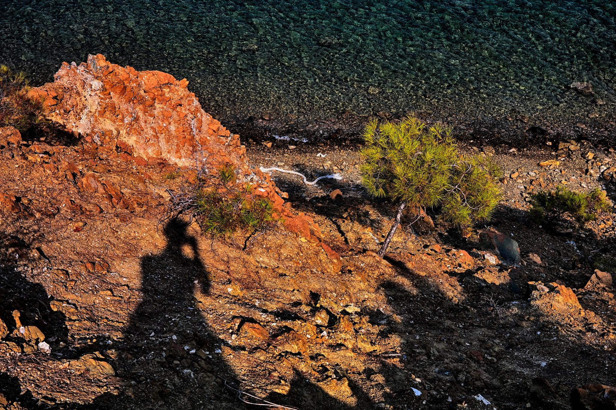 while on the mars by Muhsin Özcan