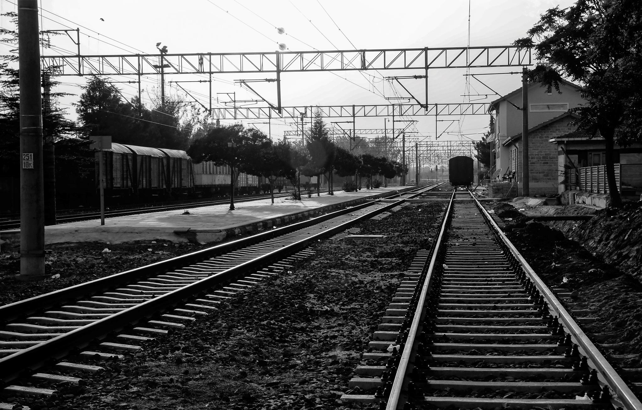 rail by Muhsin Özcan