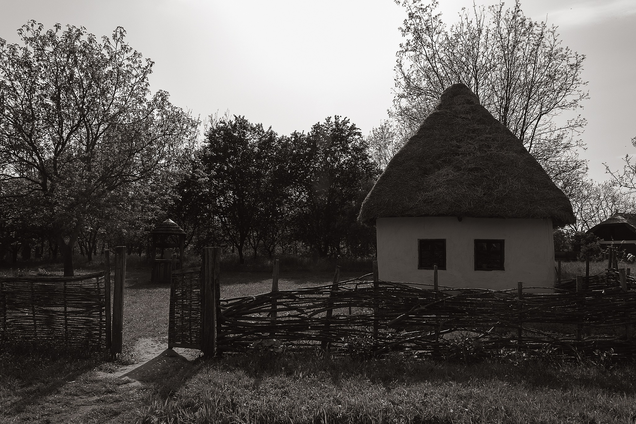 Old house by Gyula Tóth