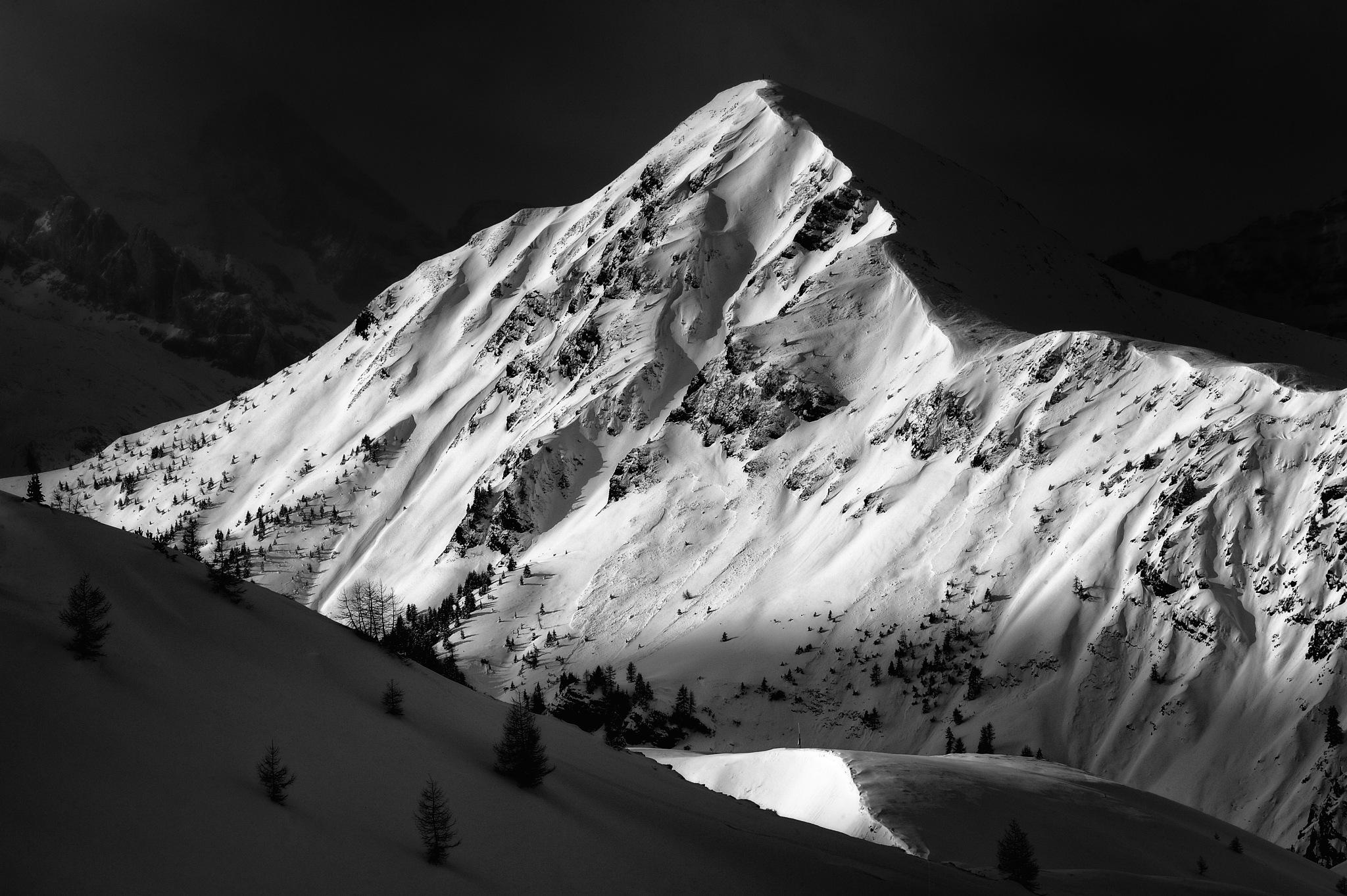 Snowy Top by Anna Pagnacco