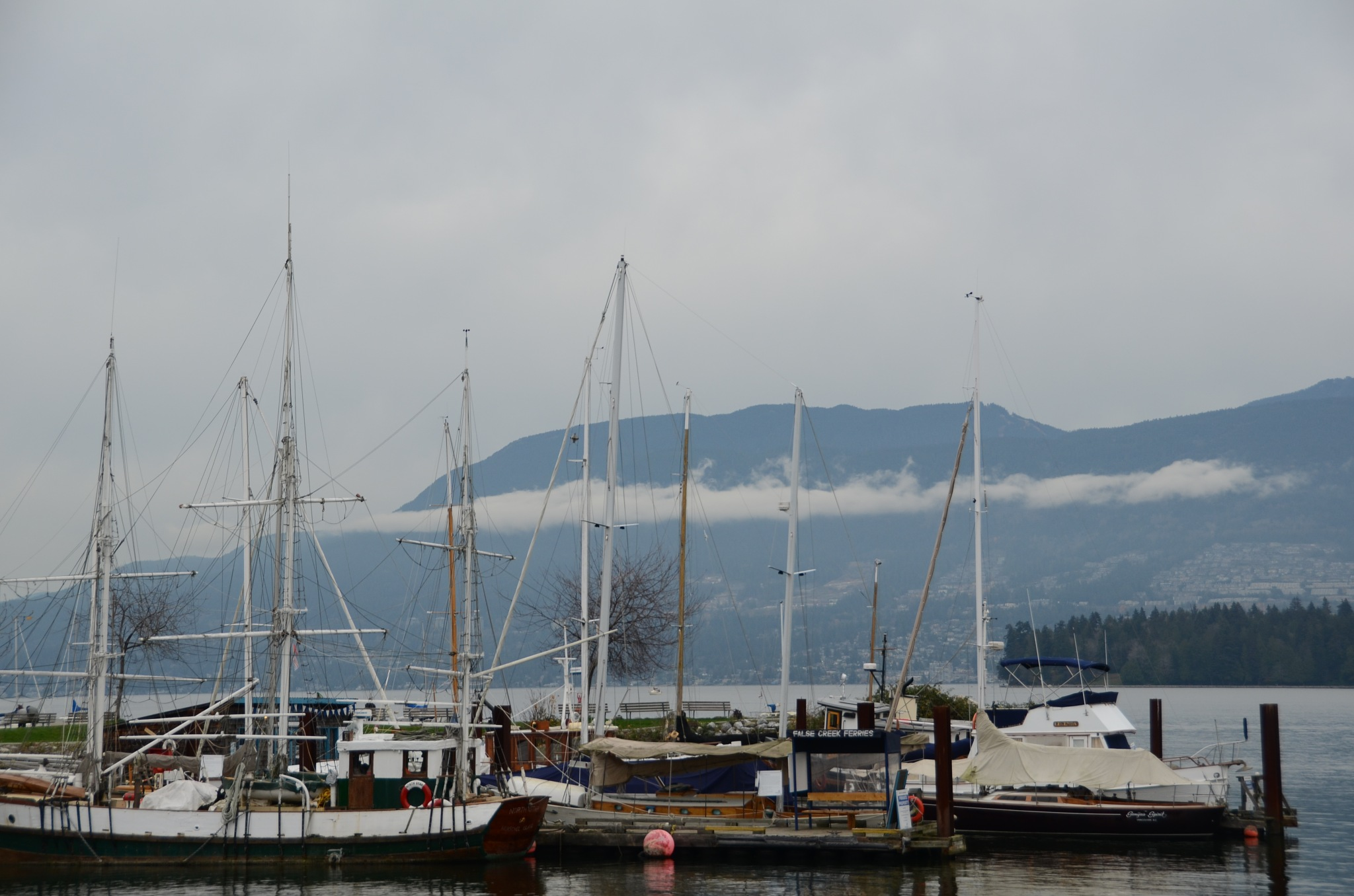 Harbour  by Julia Rosebrugh