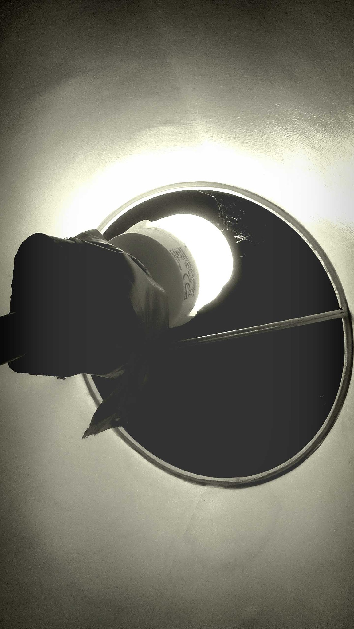 lamp by Mark Barecki