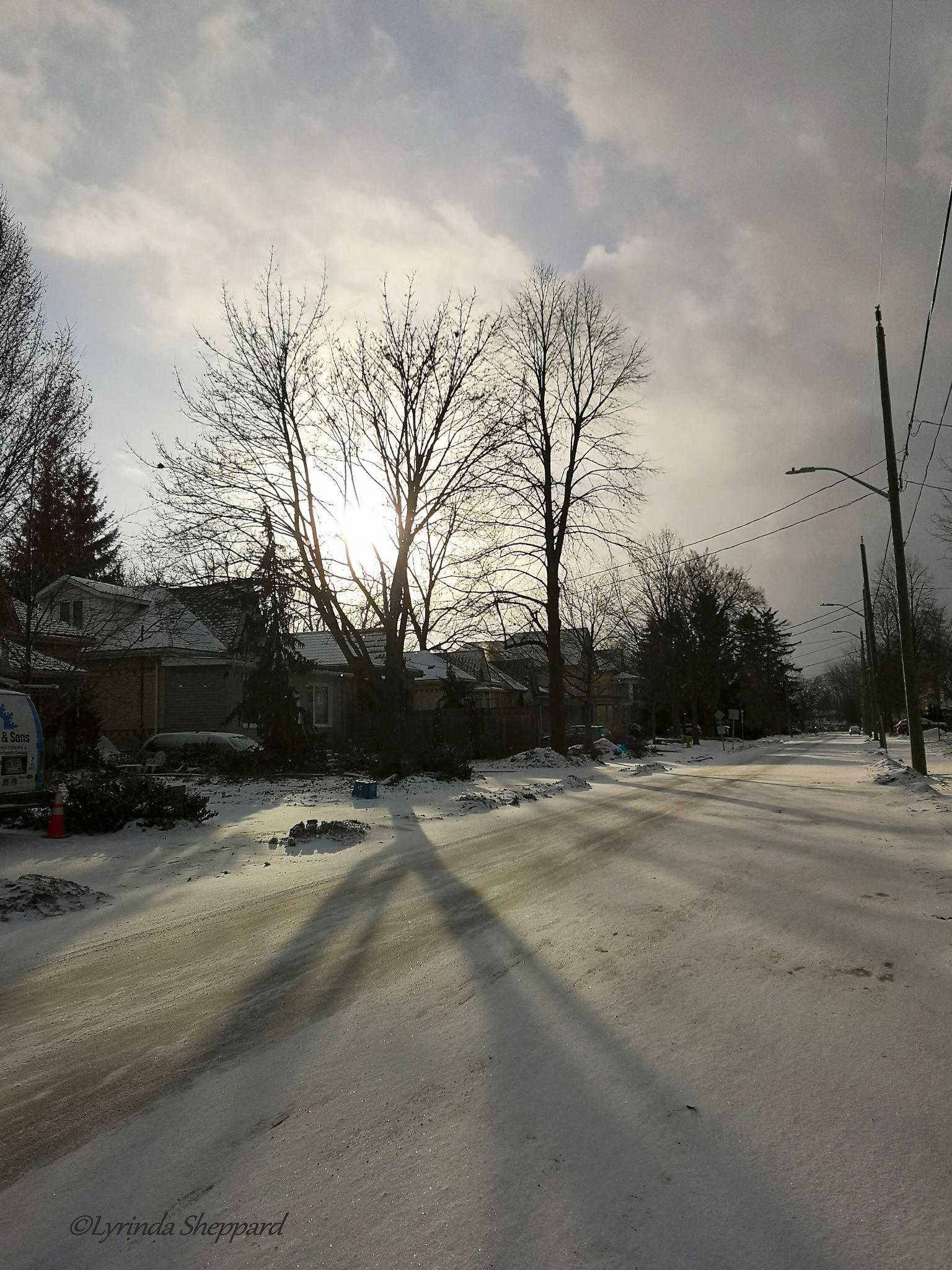 Photo in Street Photography #winter #snow #city #street #trees