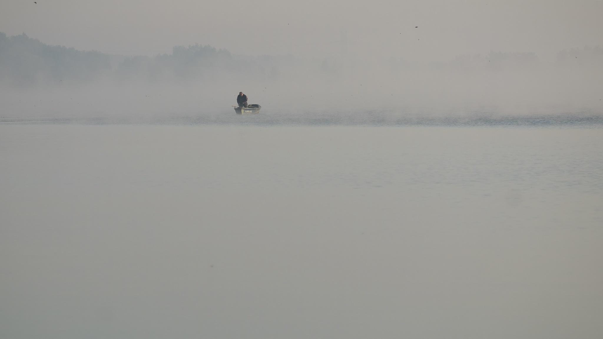 fog by lanuka