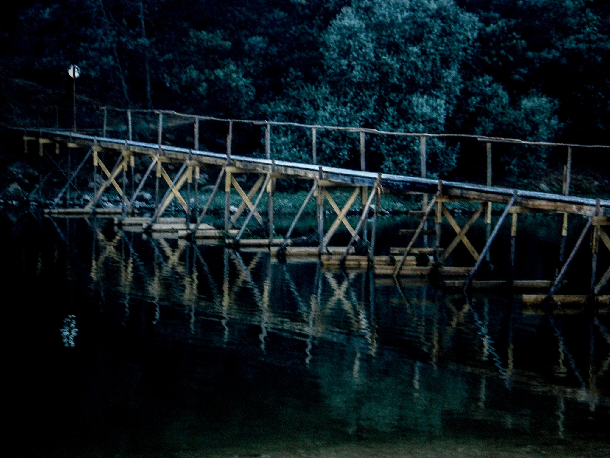 bridge by Ana Botelho