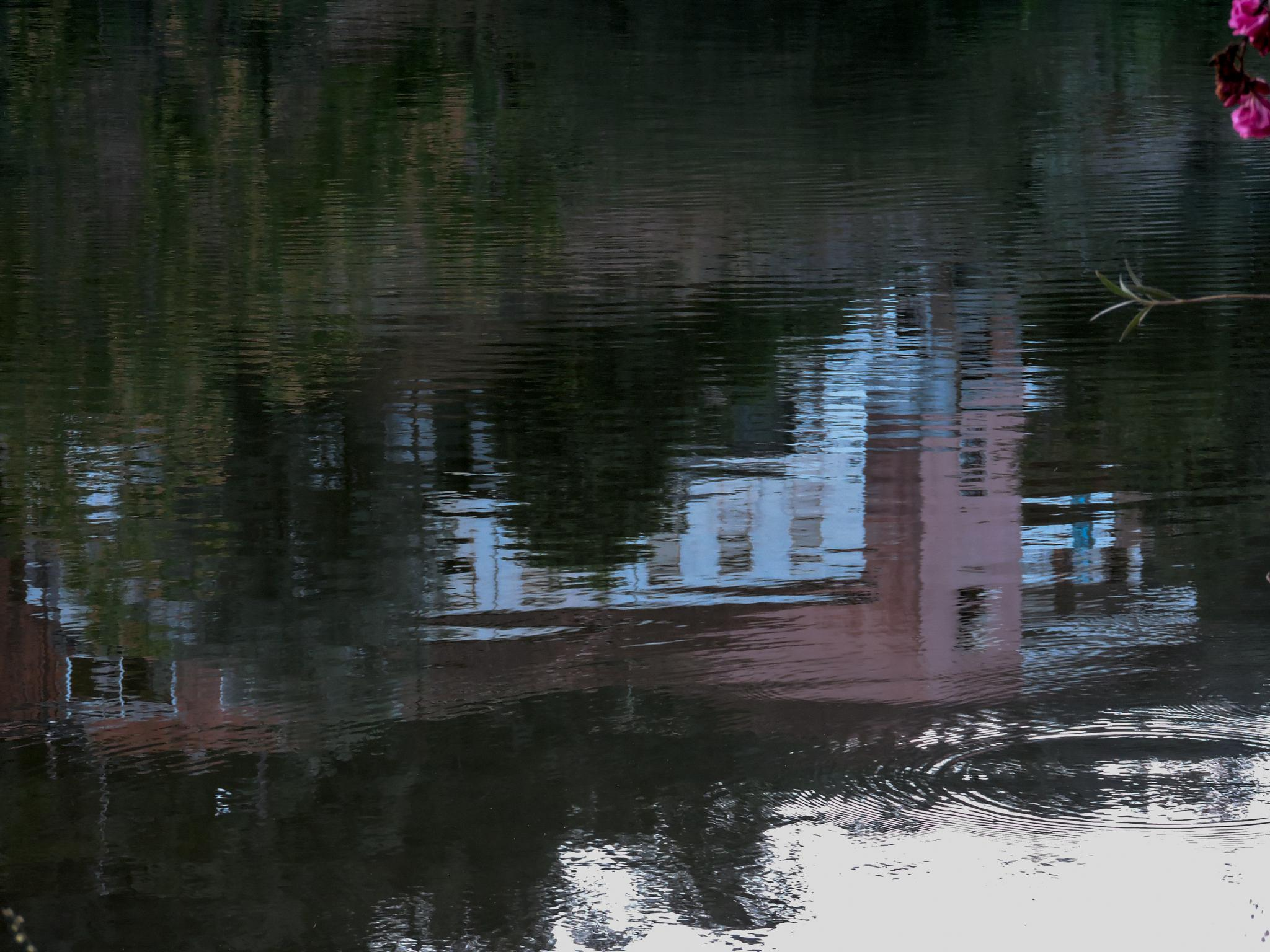 plunge house by Ana Botelho