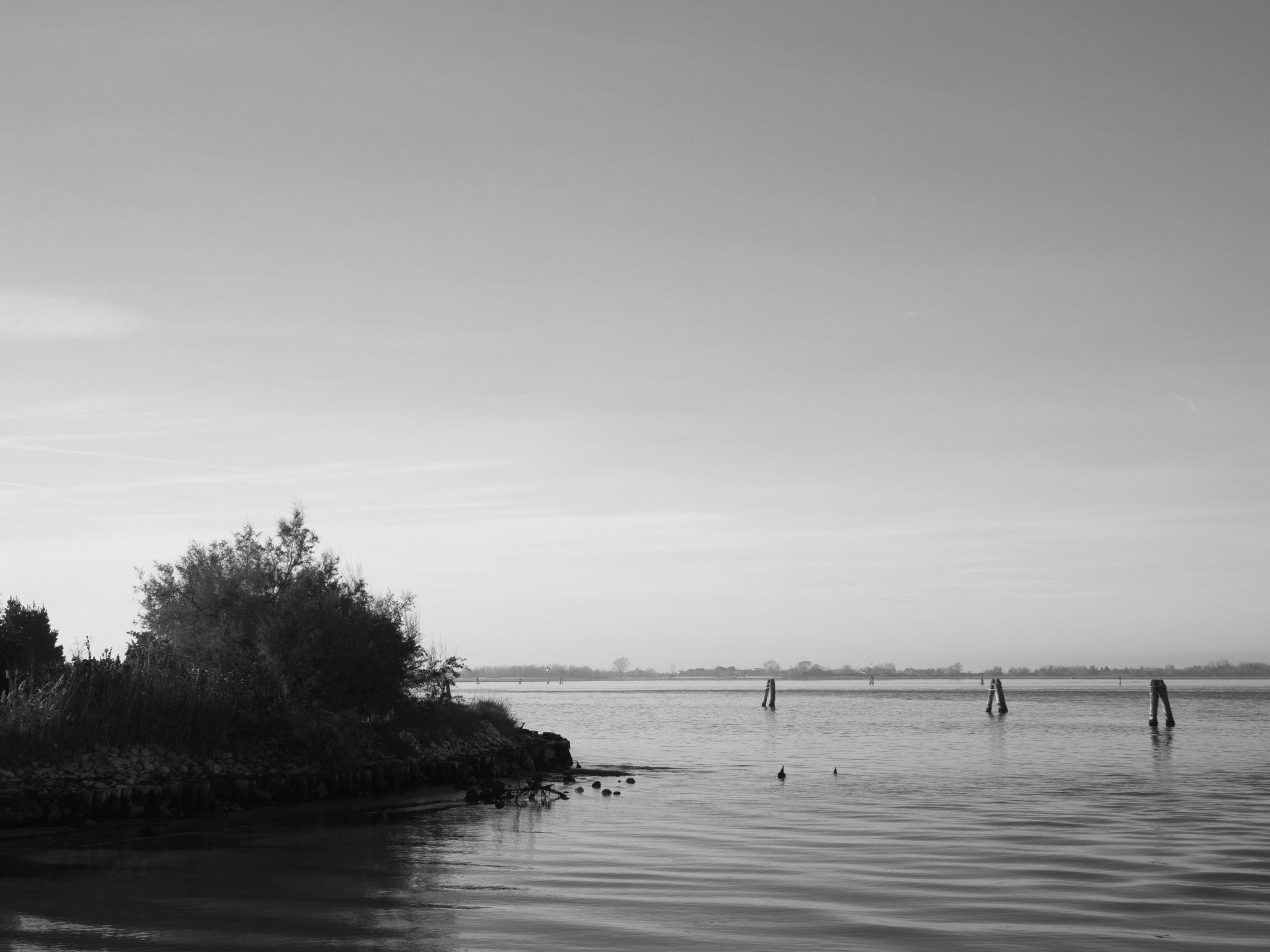 Venice lagoon by Rosinante