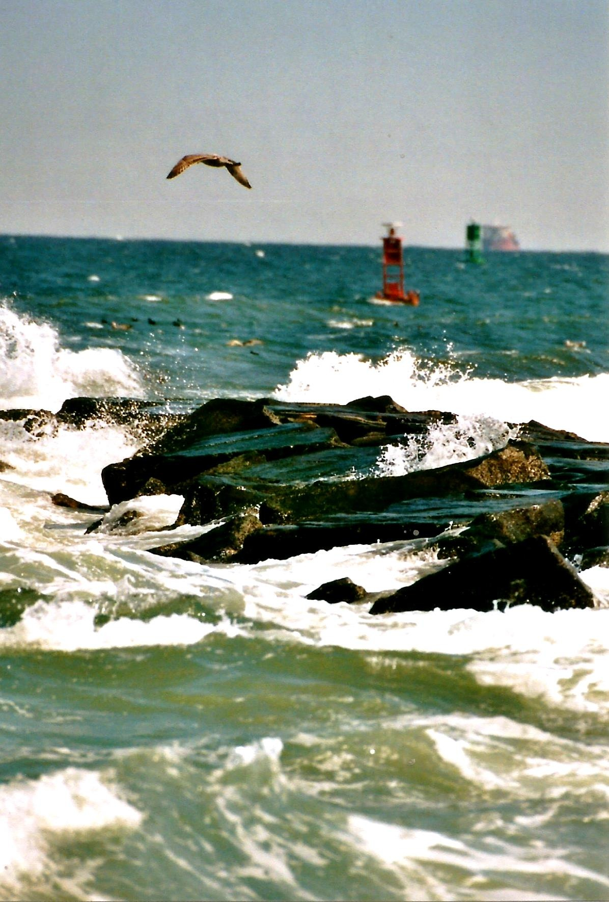 INDIAN RIVER INLET by Hope Atwood Dayhoff