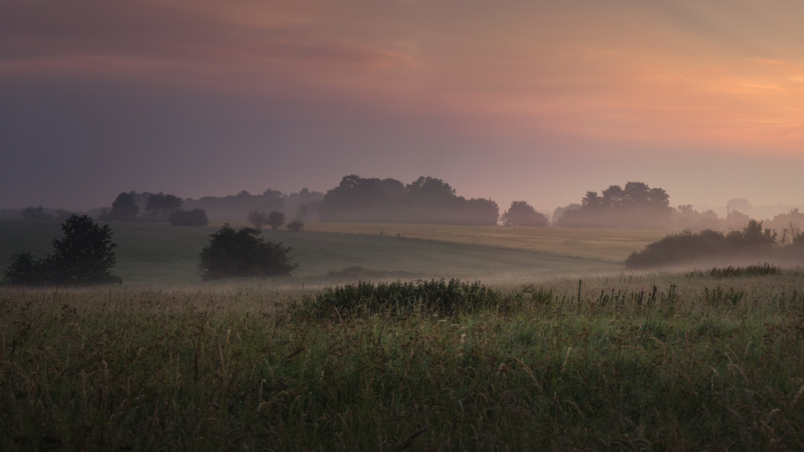 Misty Start To The Day by Brian Roberts