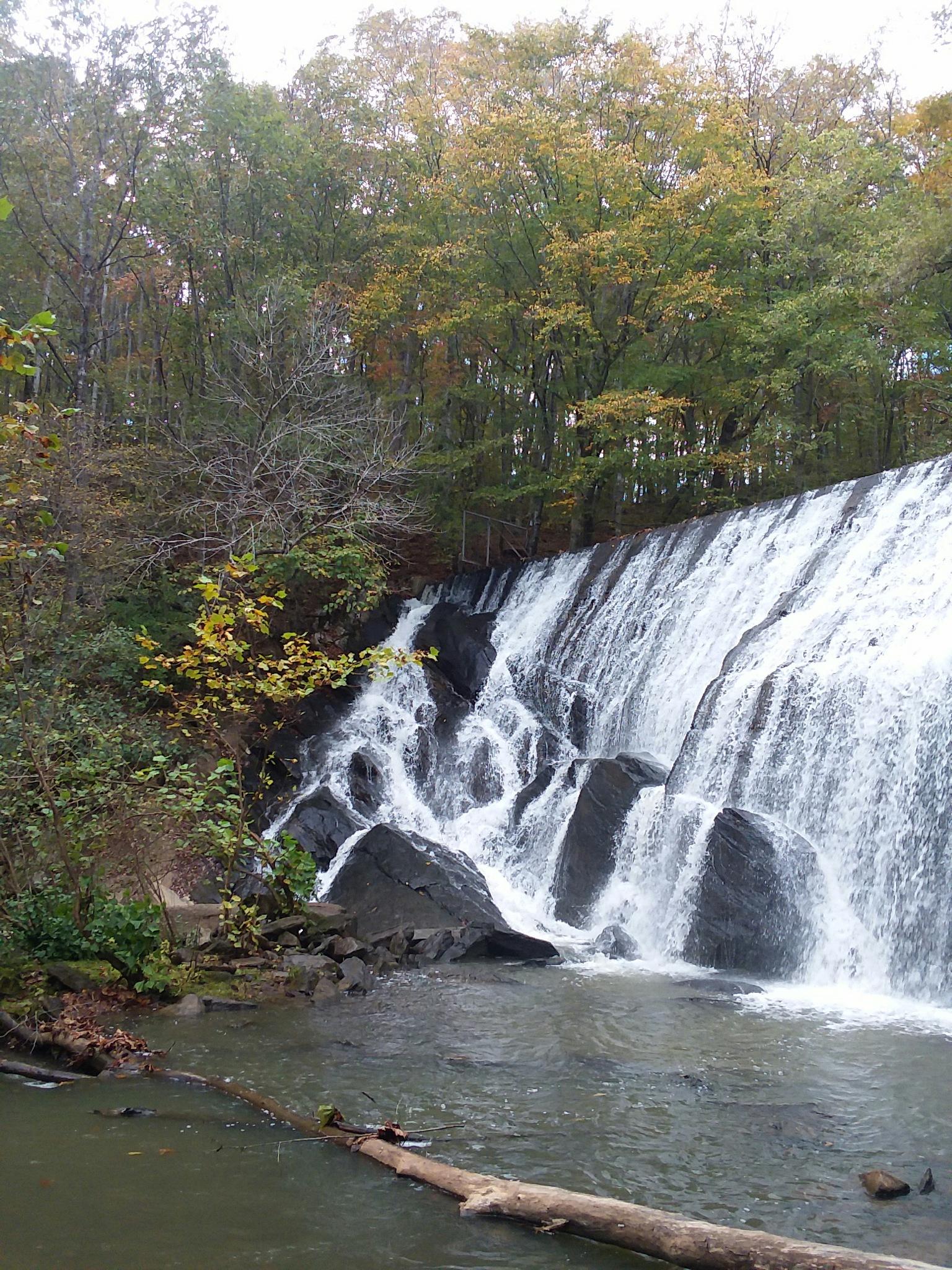 The Ridgeway Falls by Arden C Cynthia