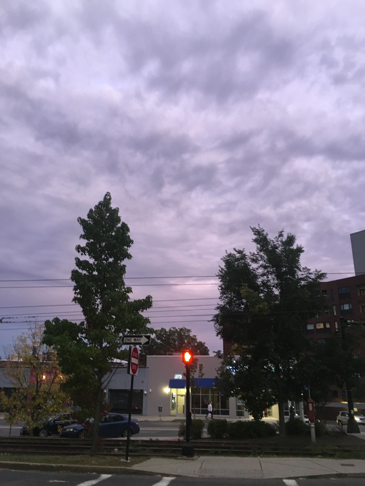 Sunset in Brookline, MA by Roxie