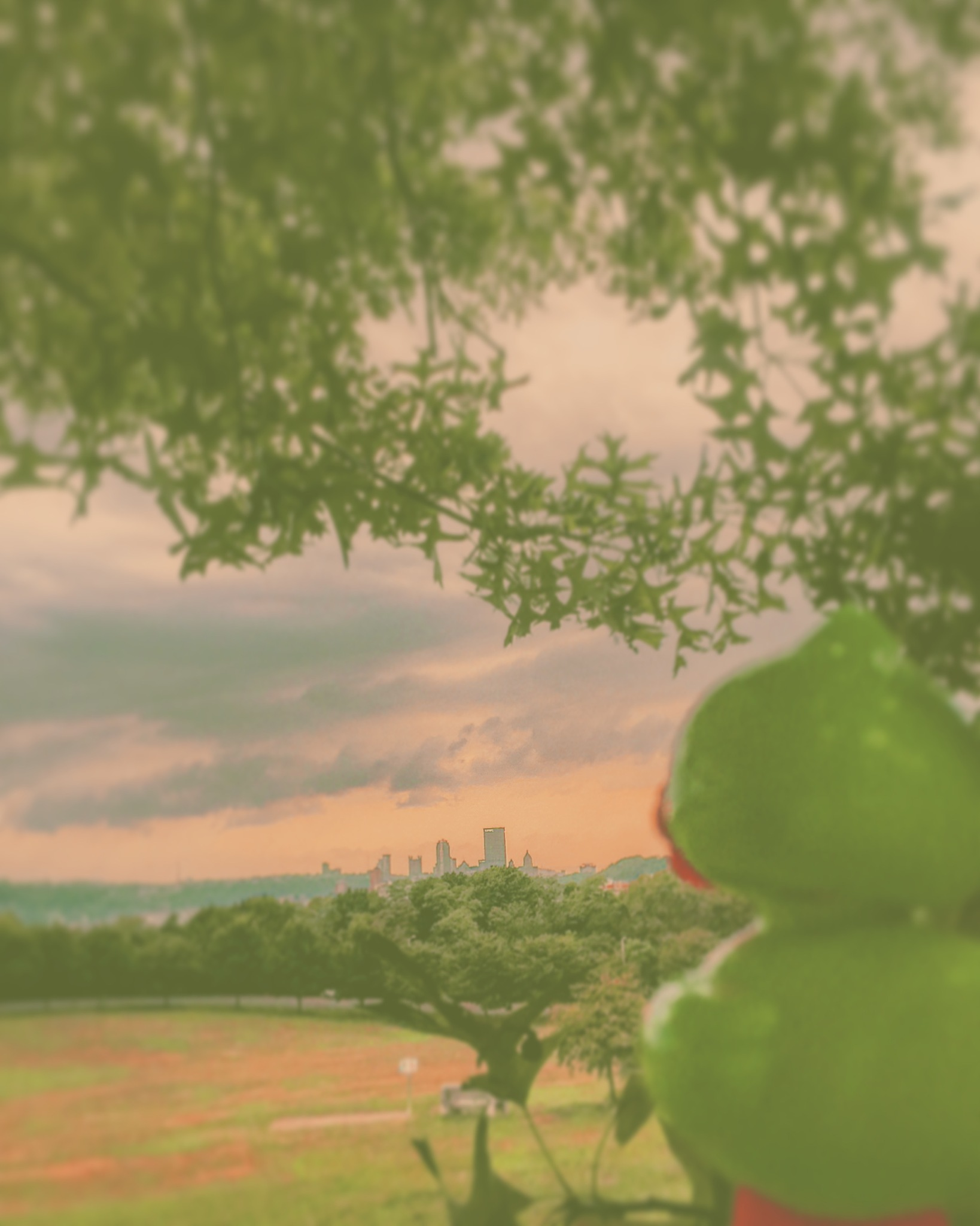Views by Digz Ya Digz-Me