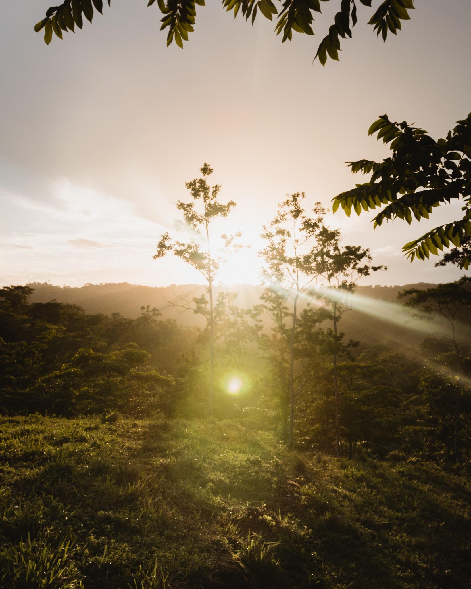 Sunset by jonathanchenzheng96
