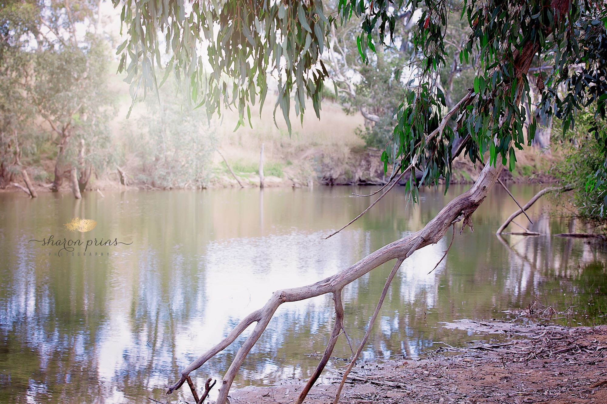 Relaxing by the river xx by Sharon Prins Photography