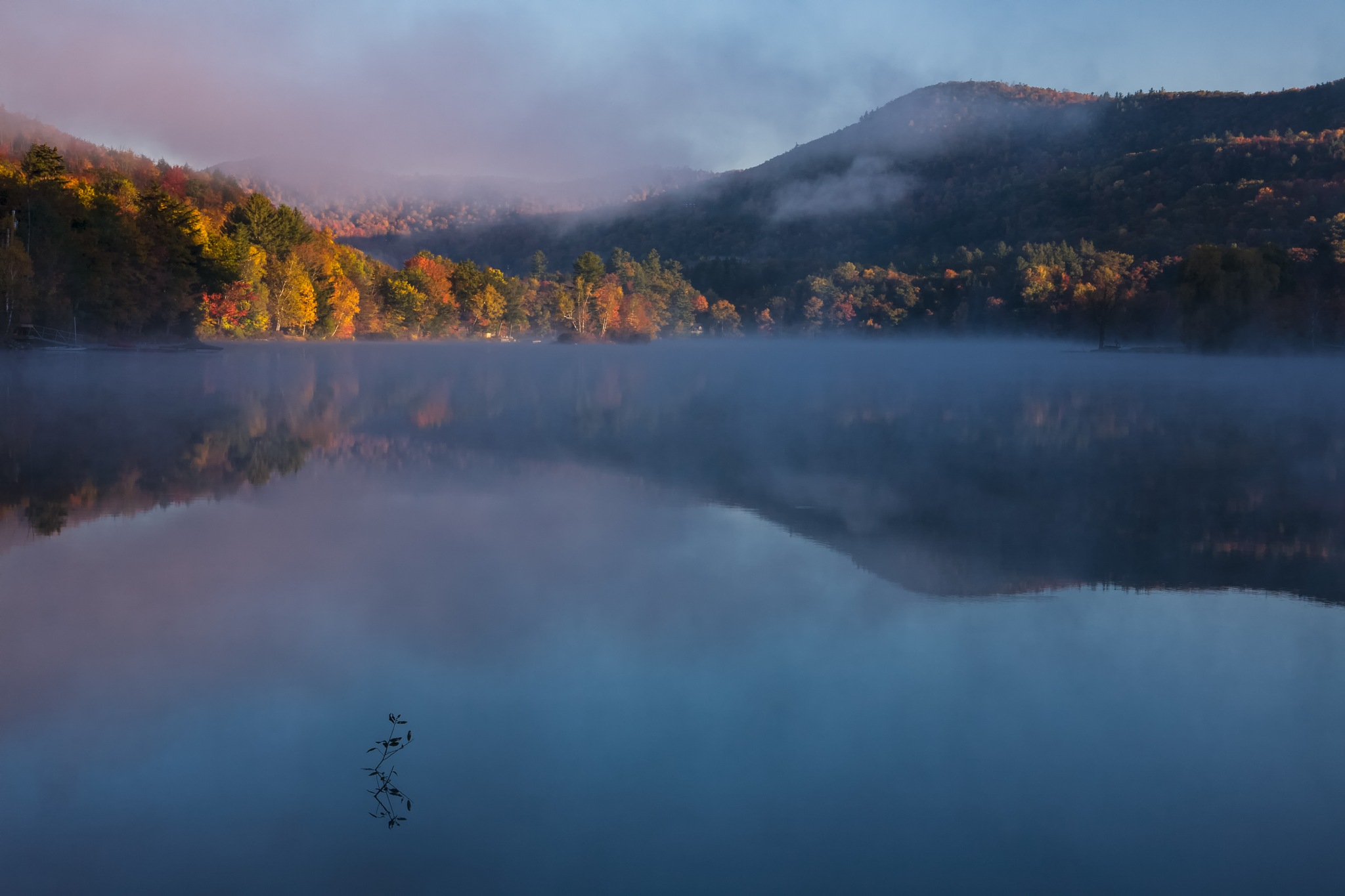Autumn reflection by Dianachang