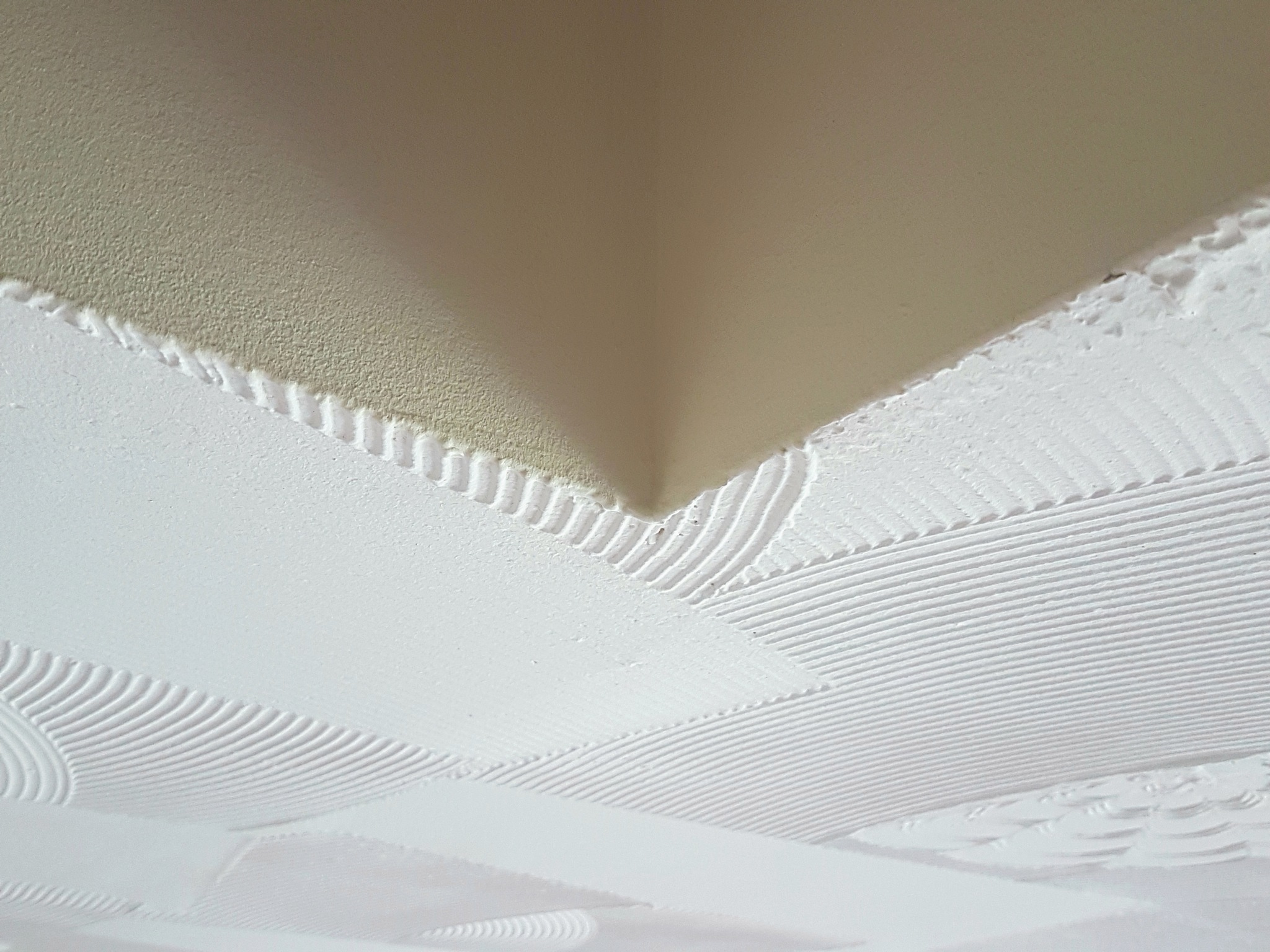 Breasted-ceiling  by Annette Francis
