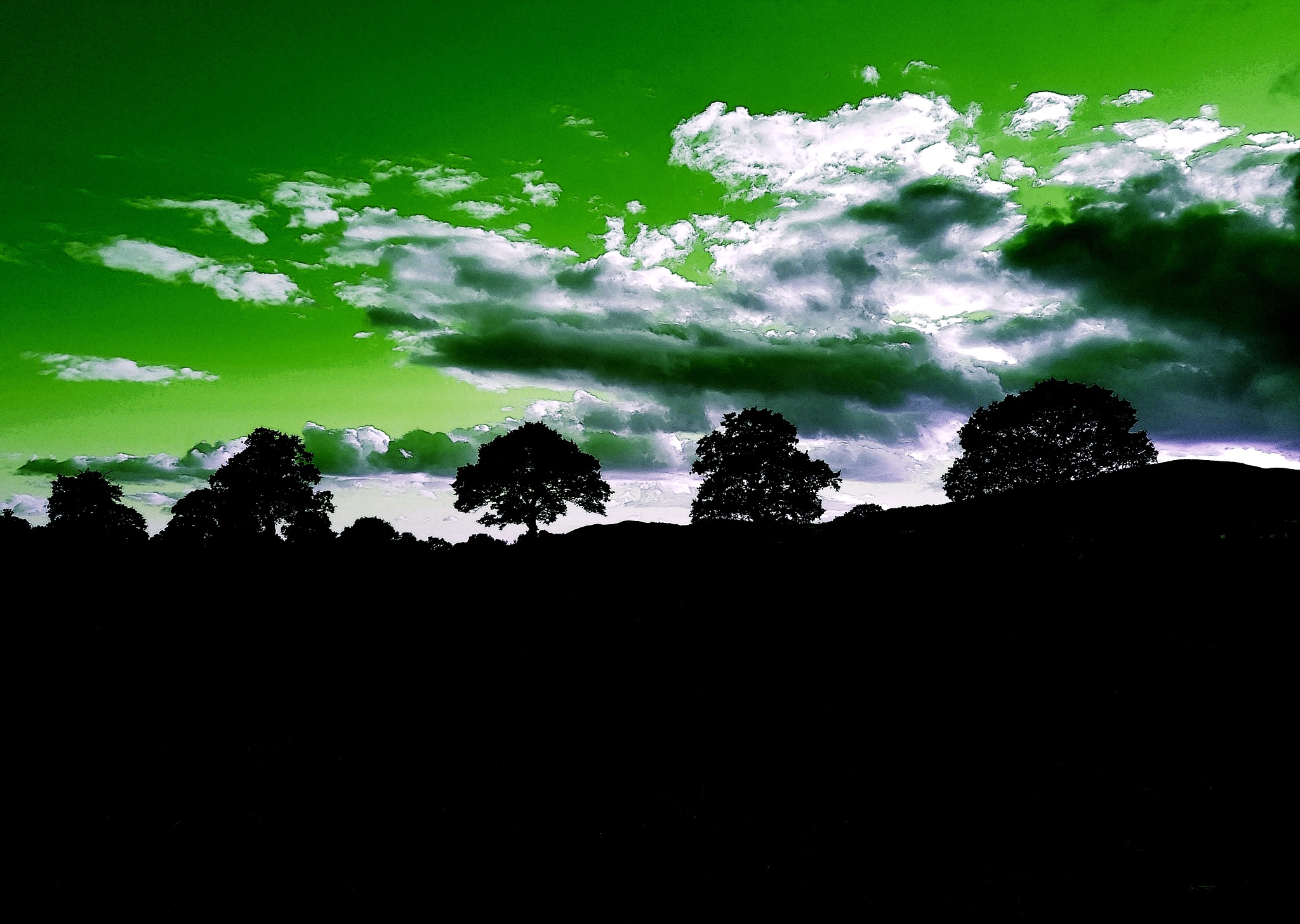 Green sky by Annette Francis