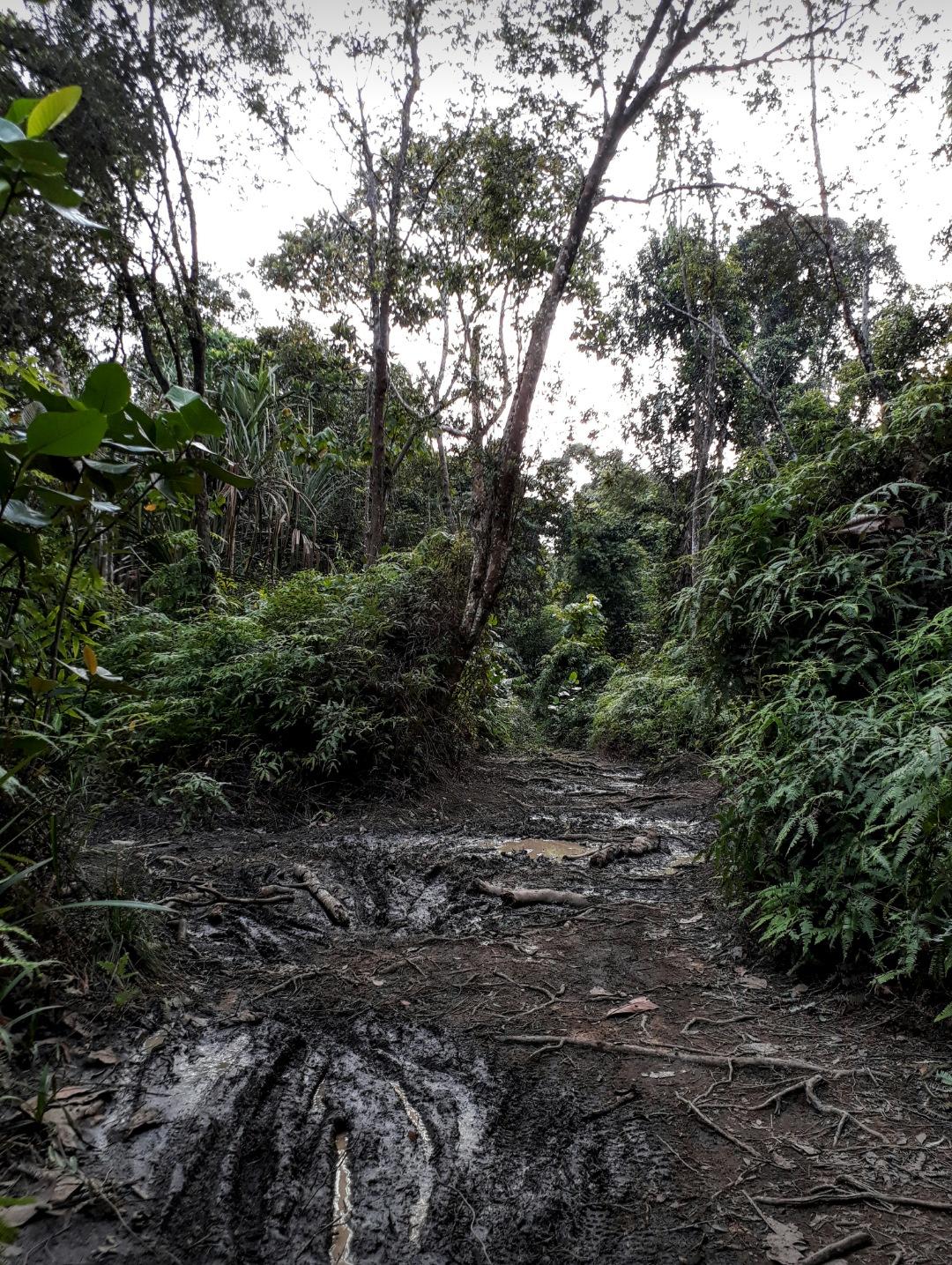 Treking Trails .. by Gary Yap