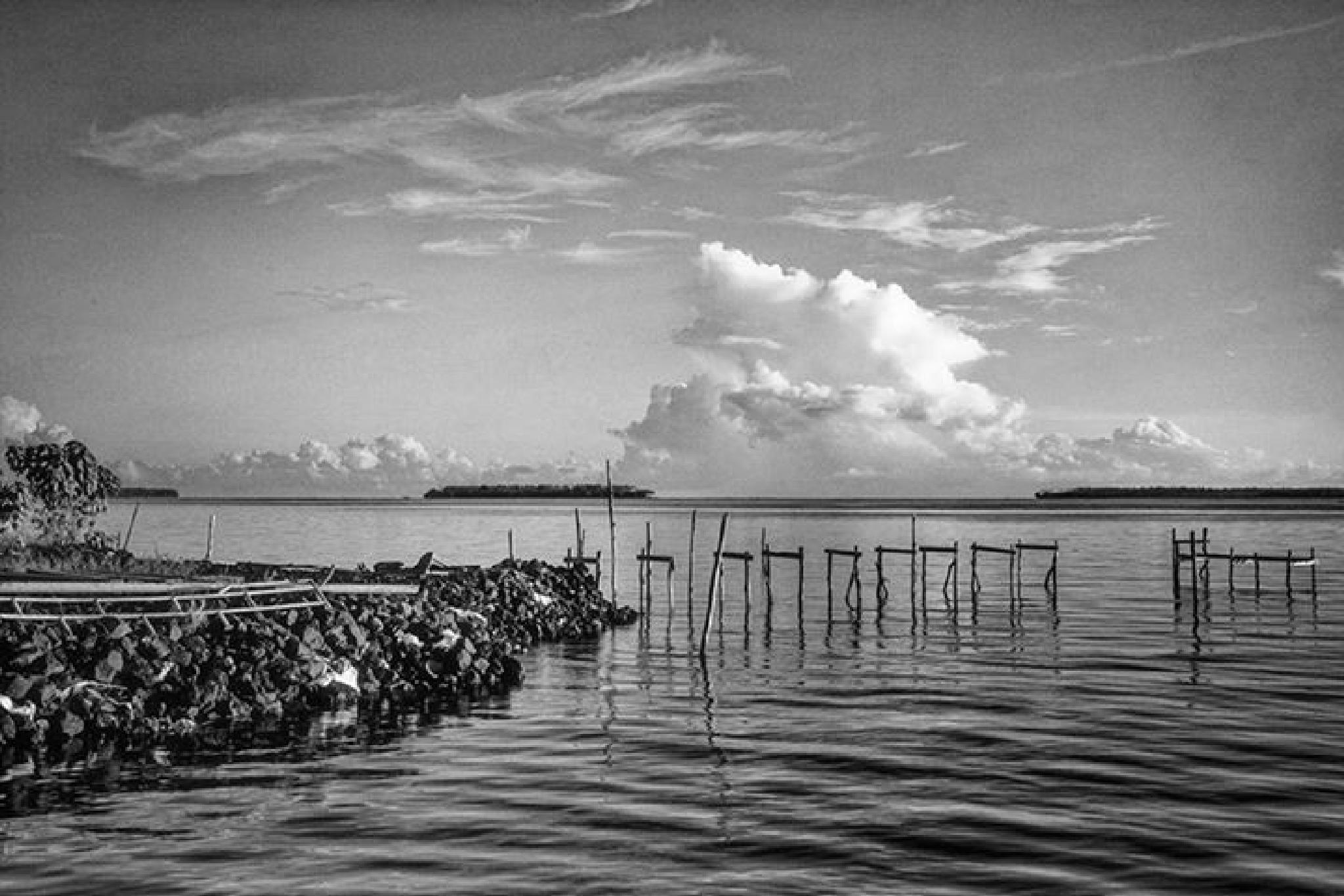 Ruins pier by Tri Handoko