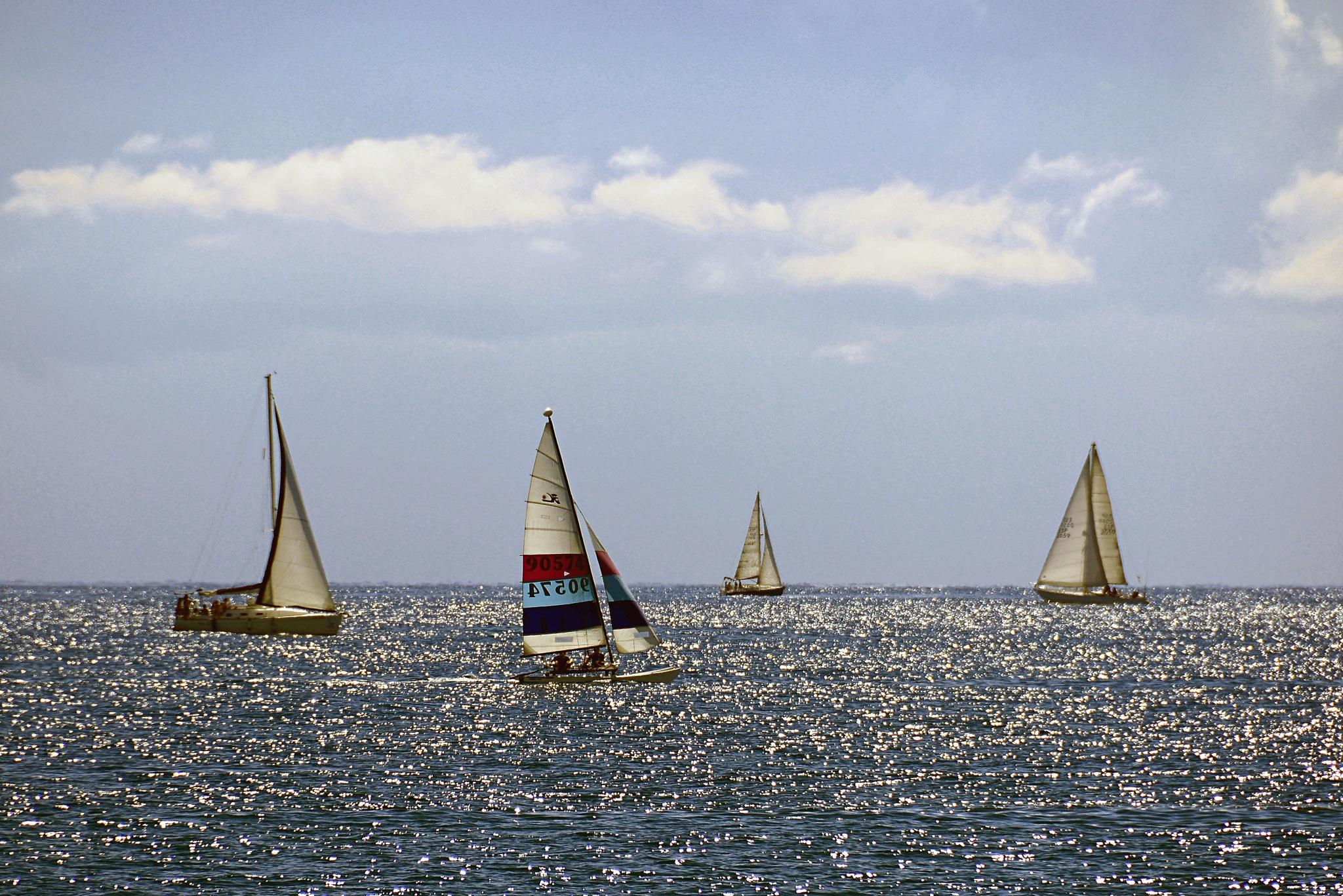 Barques / Boats by Josep Vallès