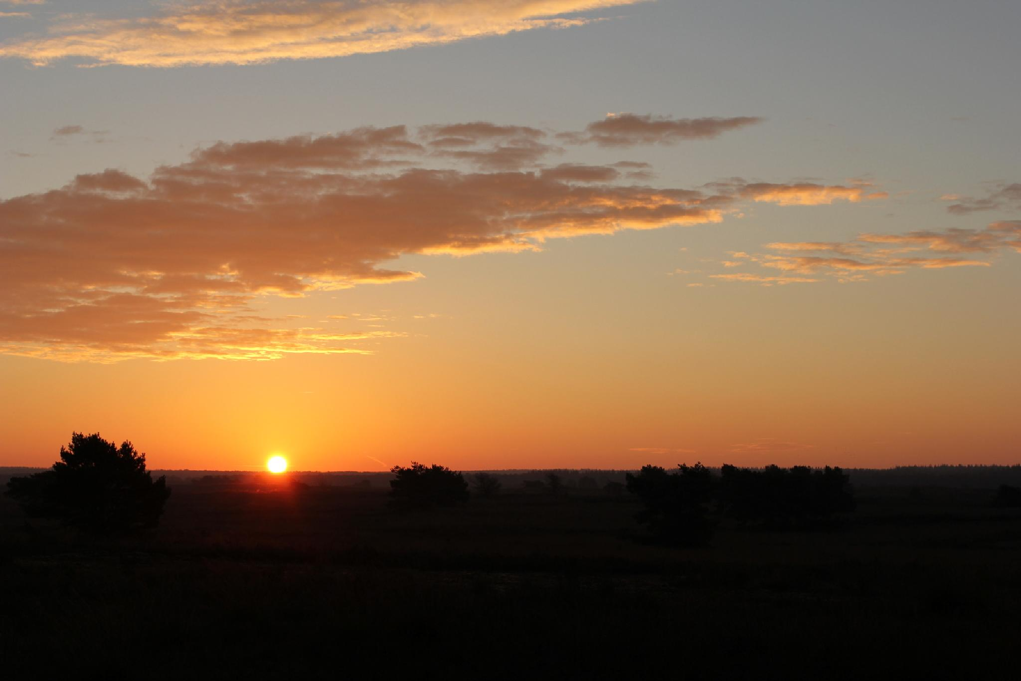 Sunrise this morning by Henry Geerling