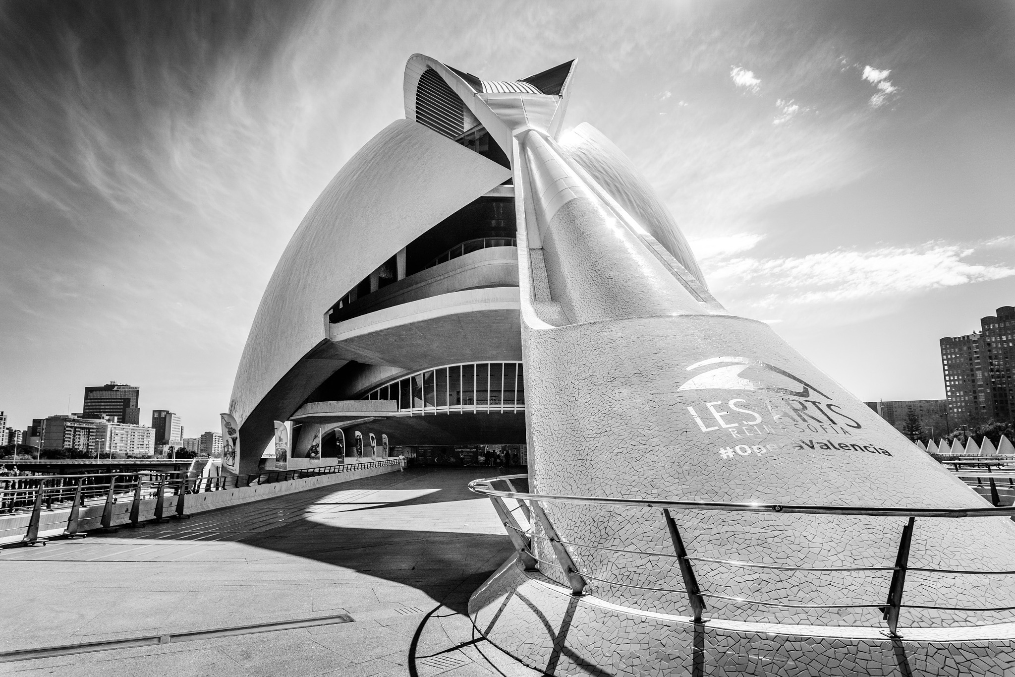 Palau De Les Arts Reina Sofia, Valencia. by Gary Gillette