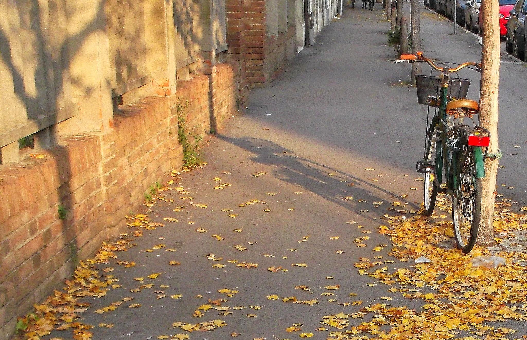 Autumn Cityscape by Nicola Alocci