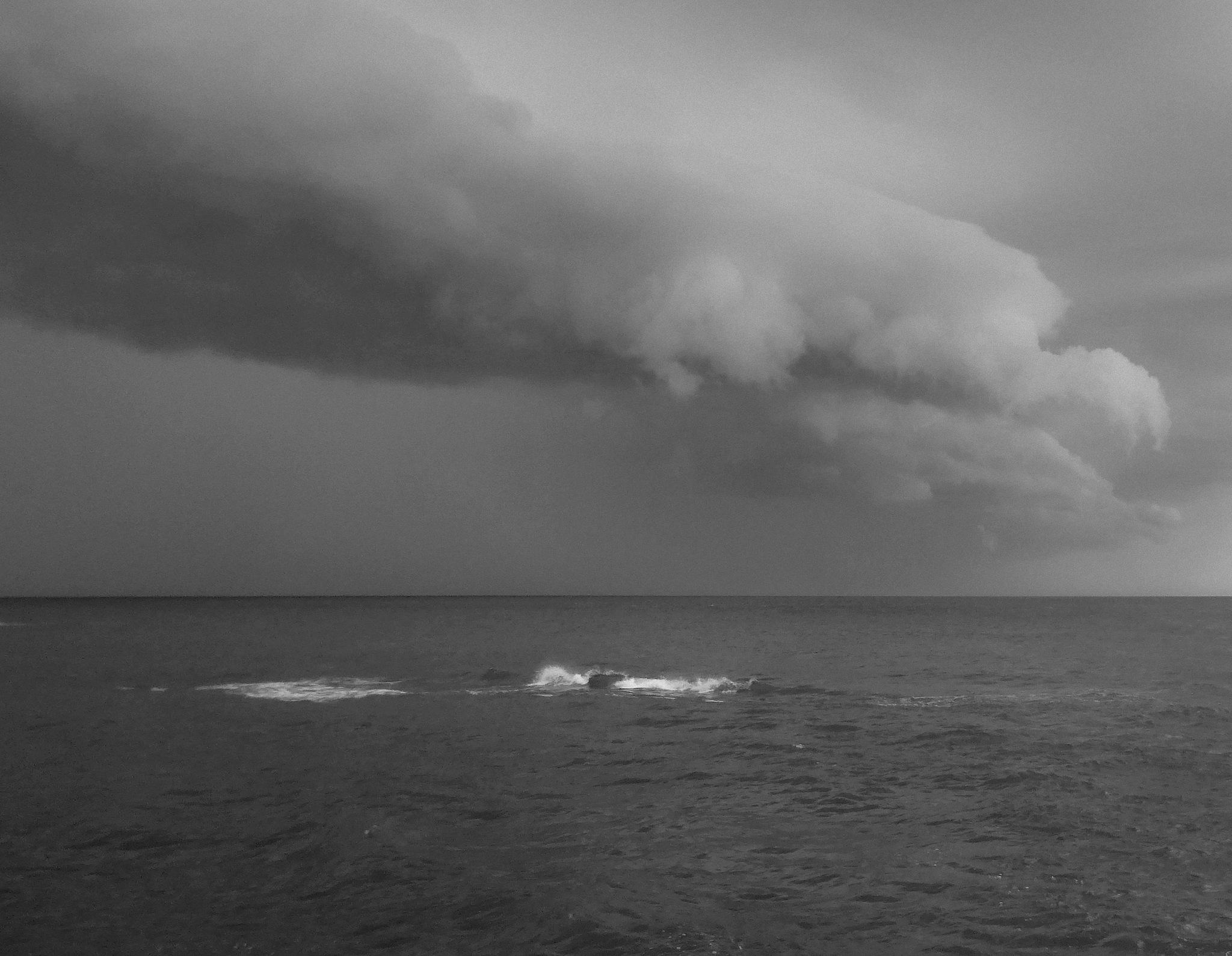 Untitled by Nicola Alocci