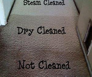 carpet cleaning  in Brisbane by ecopluscarpetcleaning