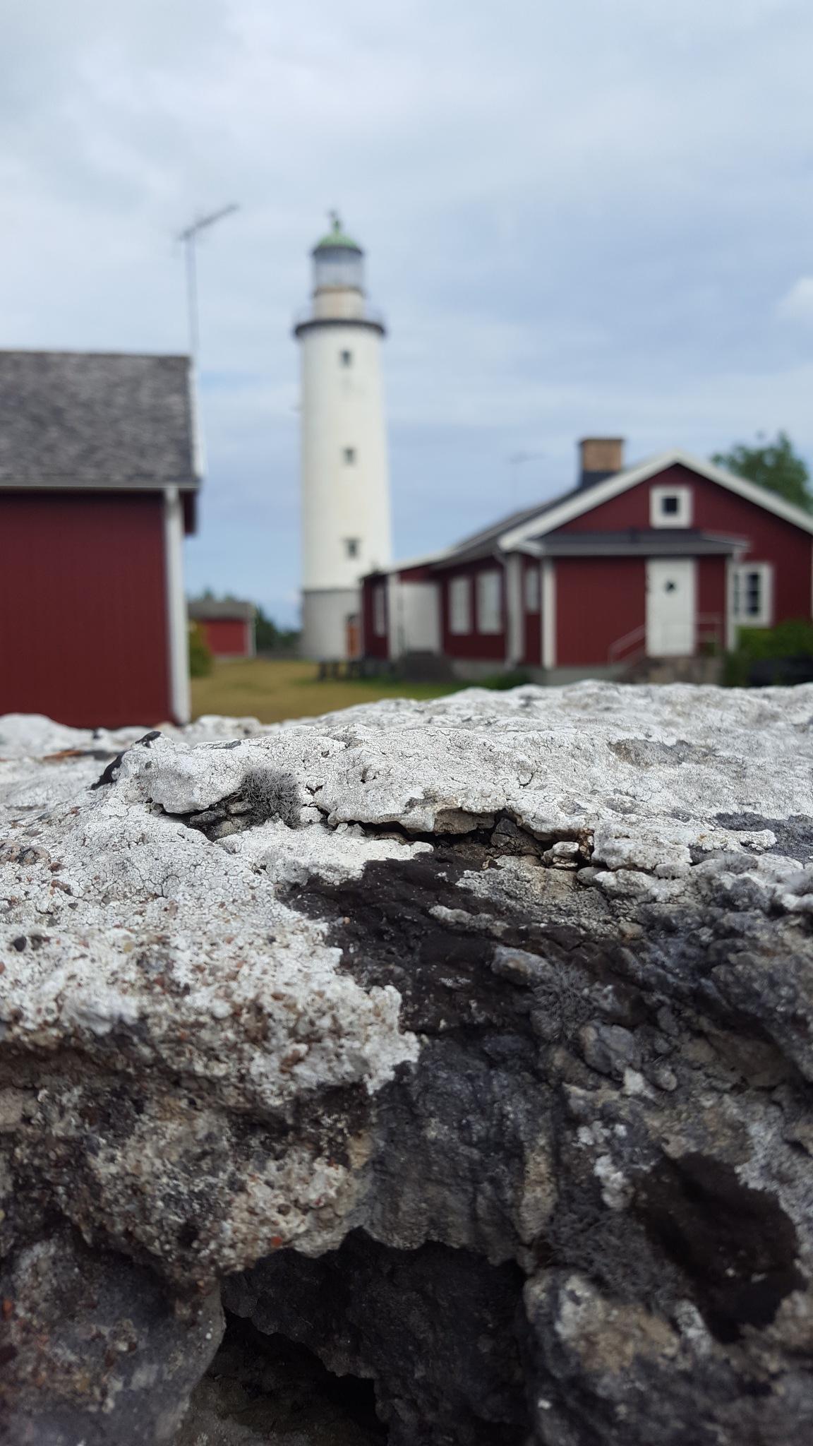 Lighthouse by MLY
