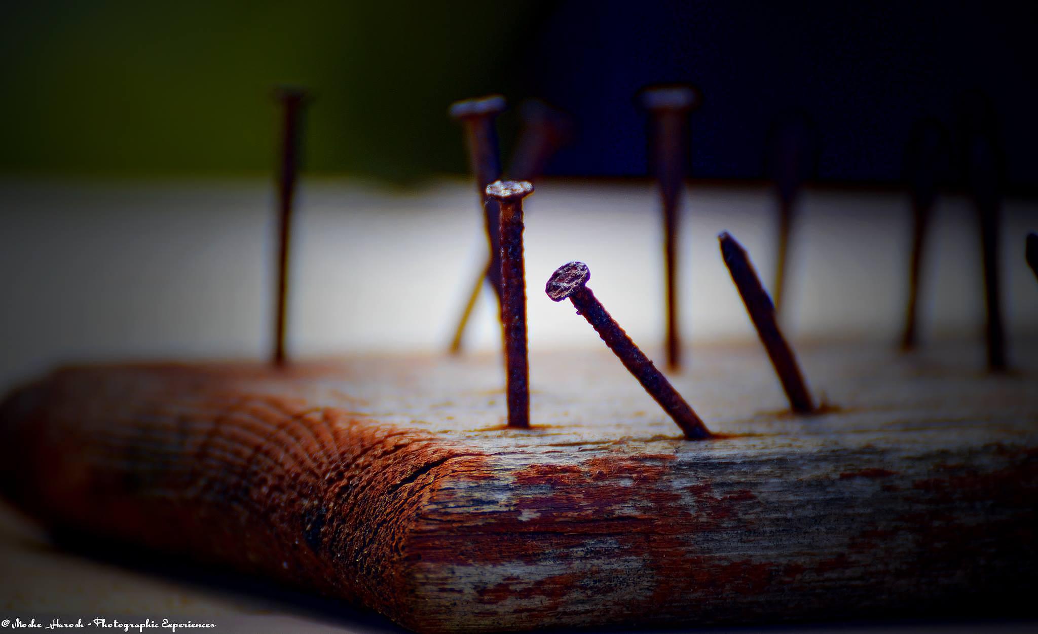 Nails by Moshe Harosh