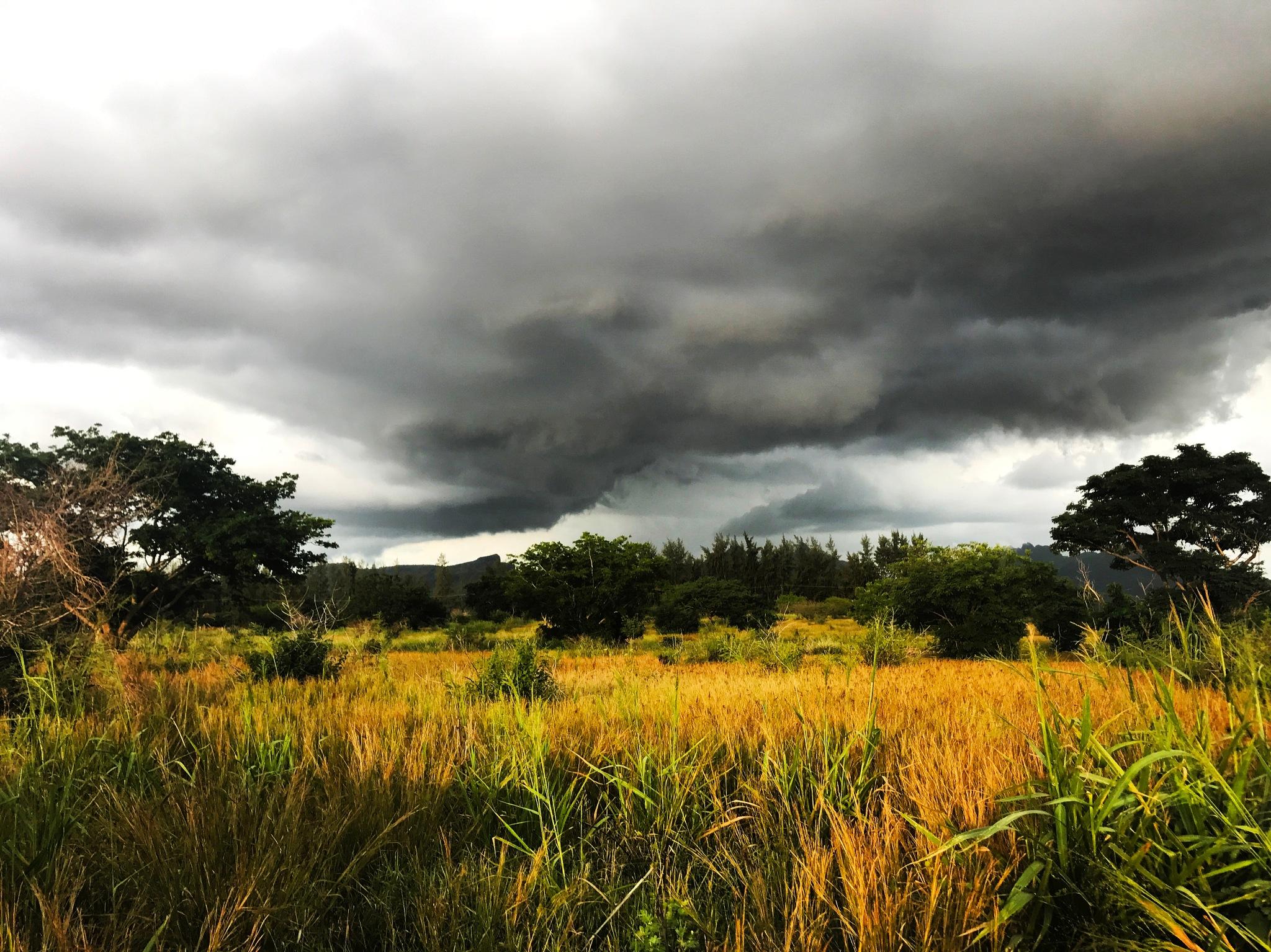 Cloudy Weather  by Hasnaa Ameer Hossen