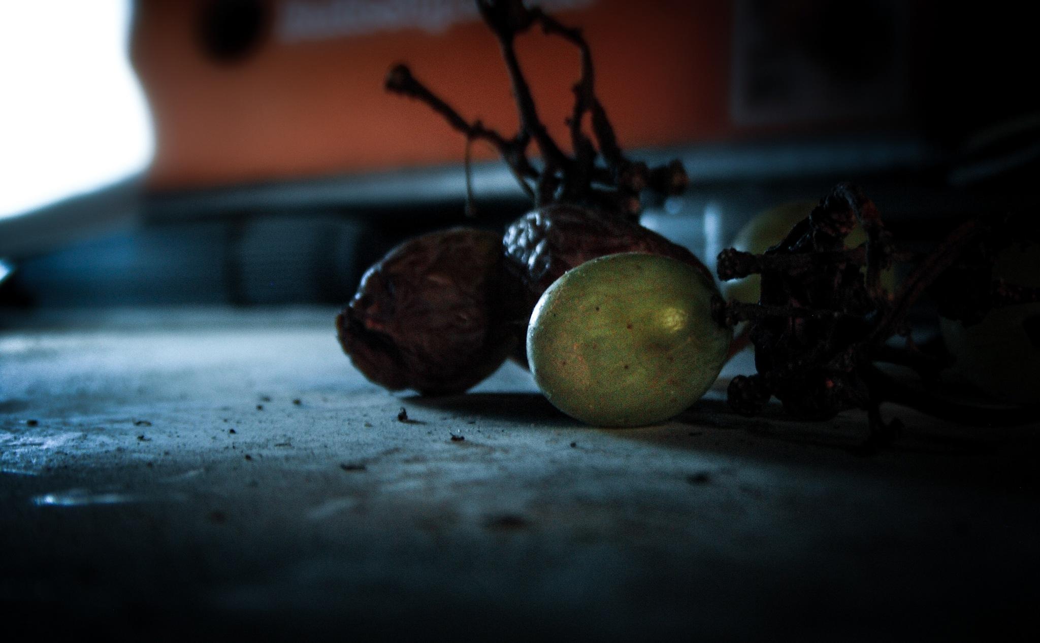 still life again !!! by Ayoub Bouchakour