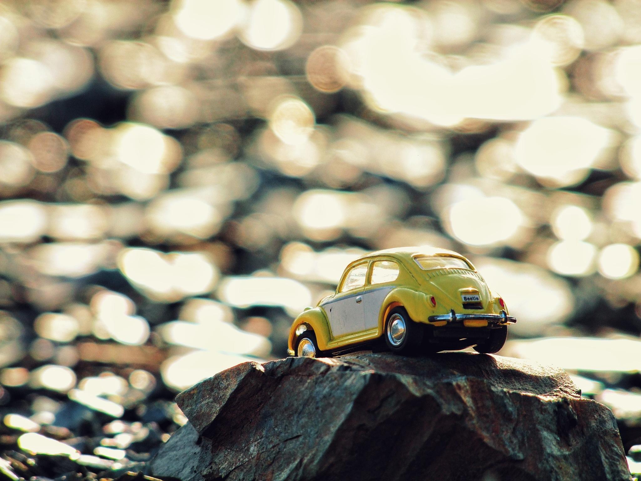 Mr yellow by Nima Nekookar