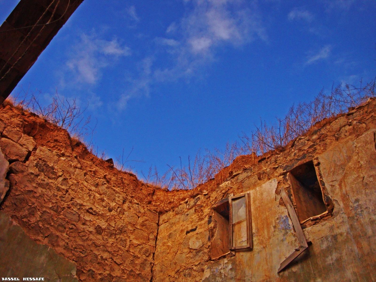 IN SYRIA by Basel H Daneel