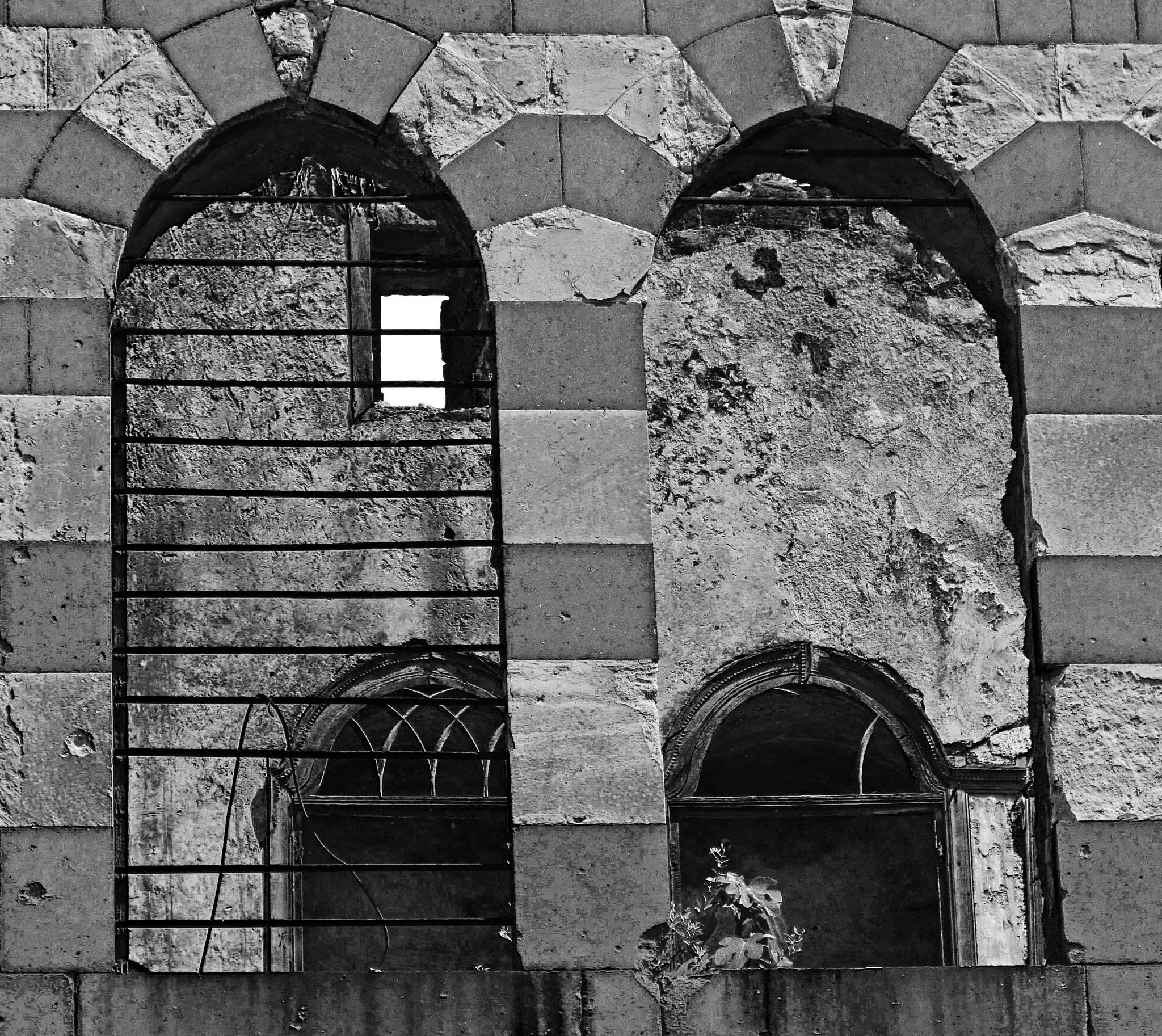 WINDOWS  by Basel H Daneel