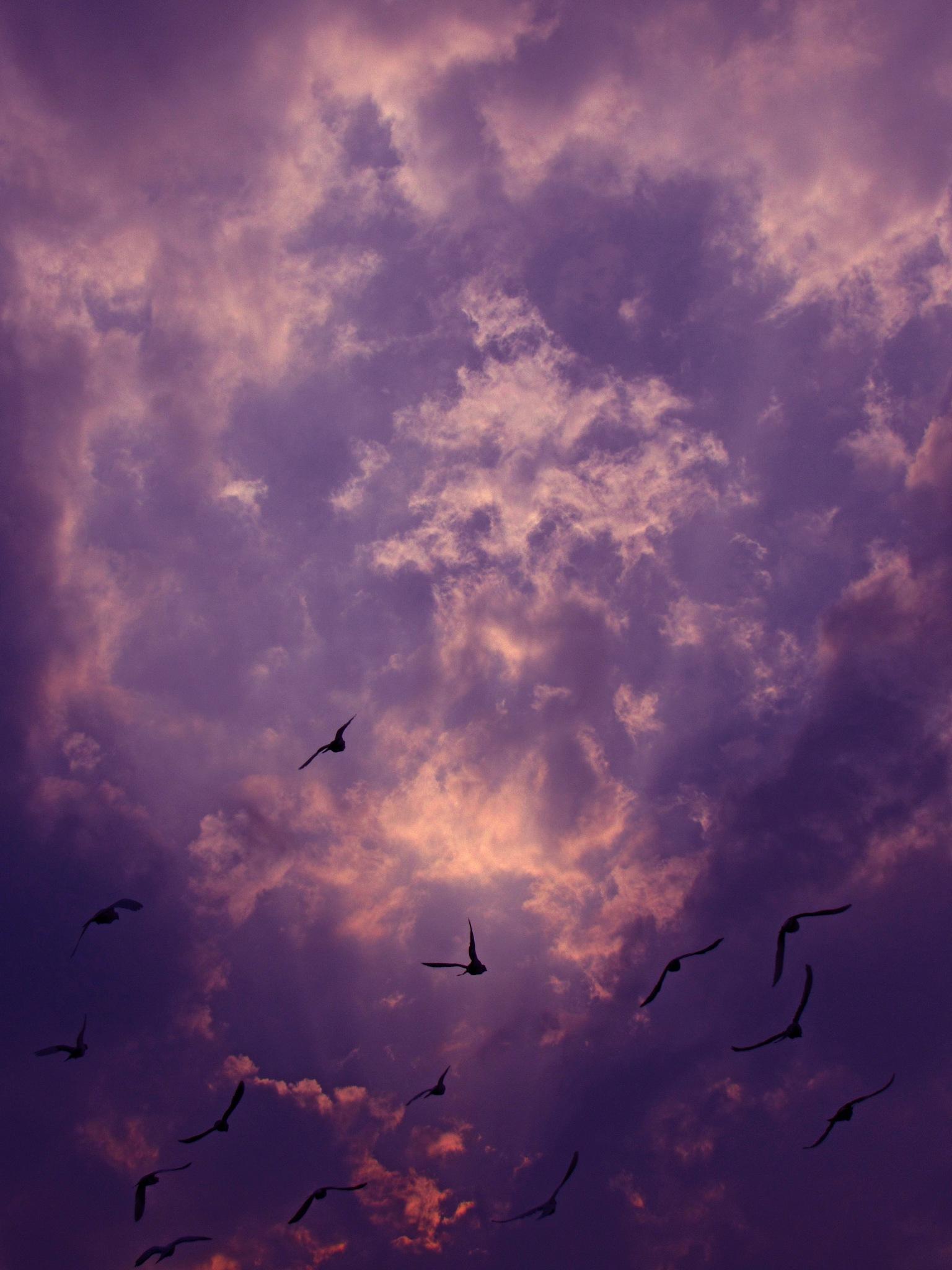 SKY  by Basel H Daneel
