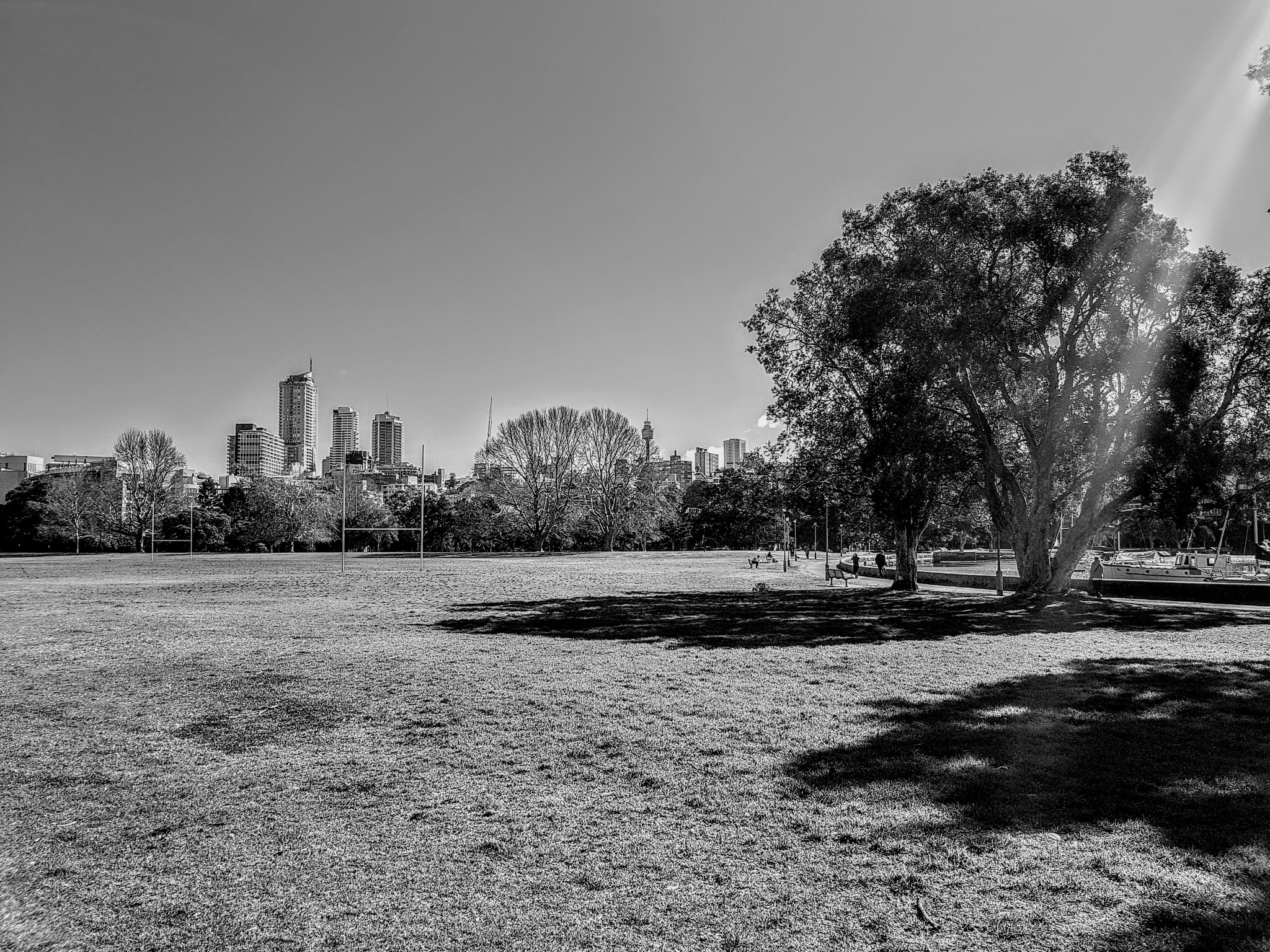Beam of light radiating down on the park by Amanda Savage