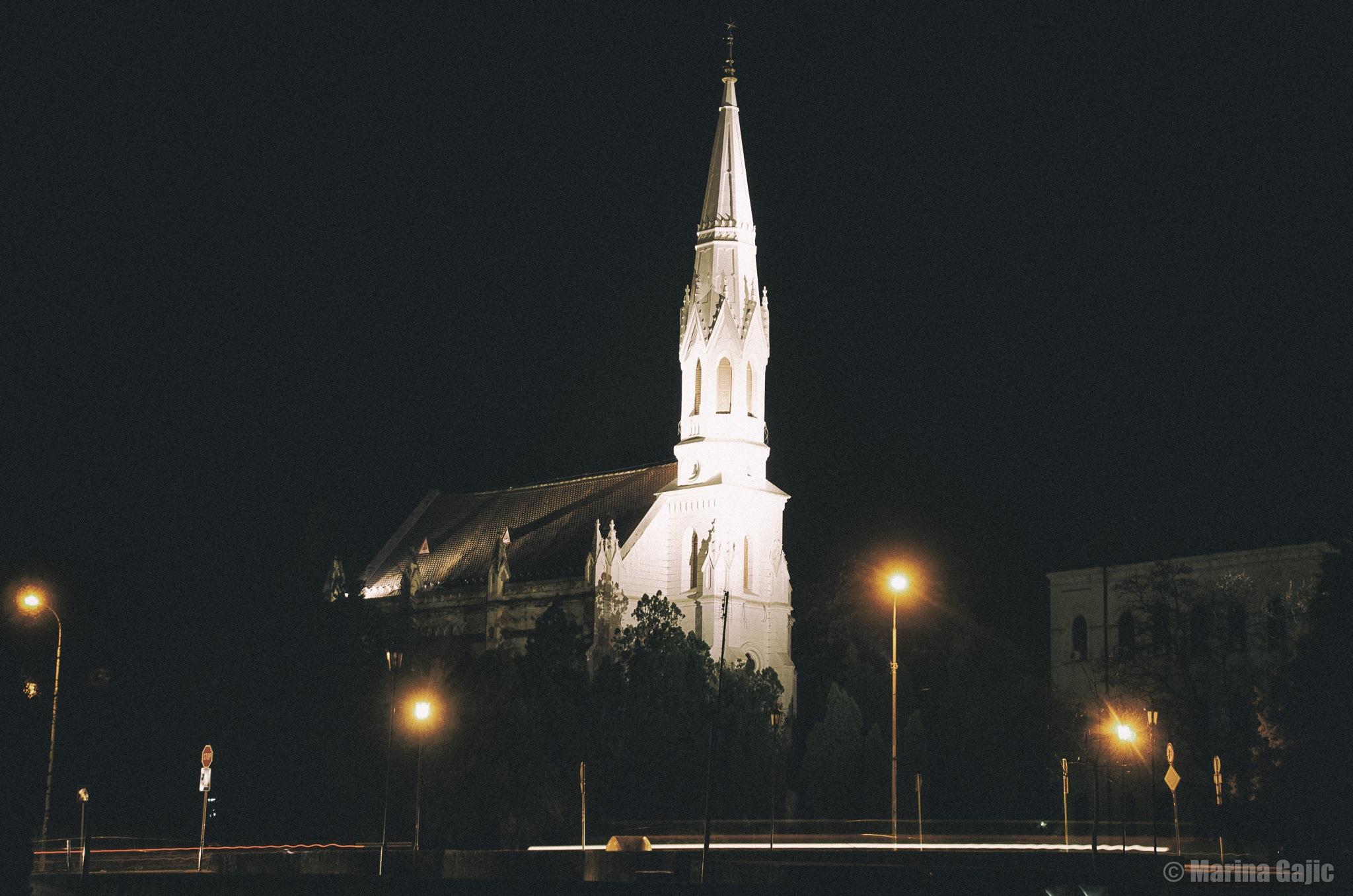 Night by Marina Gajic