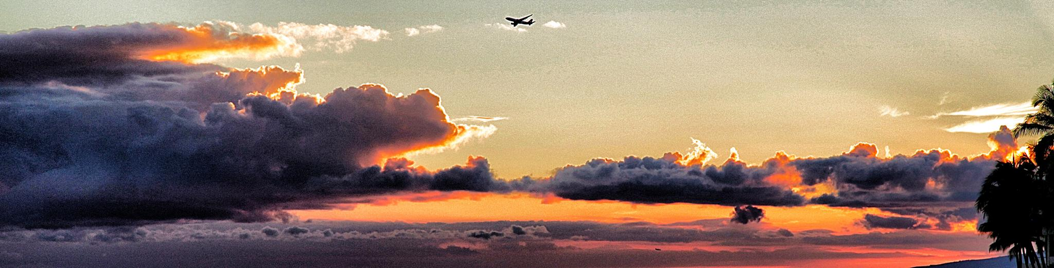 What a night to fly! by Michael Lyon