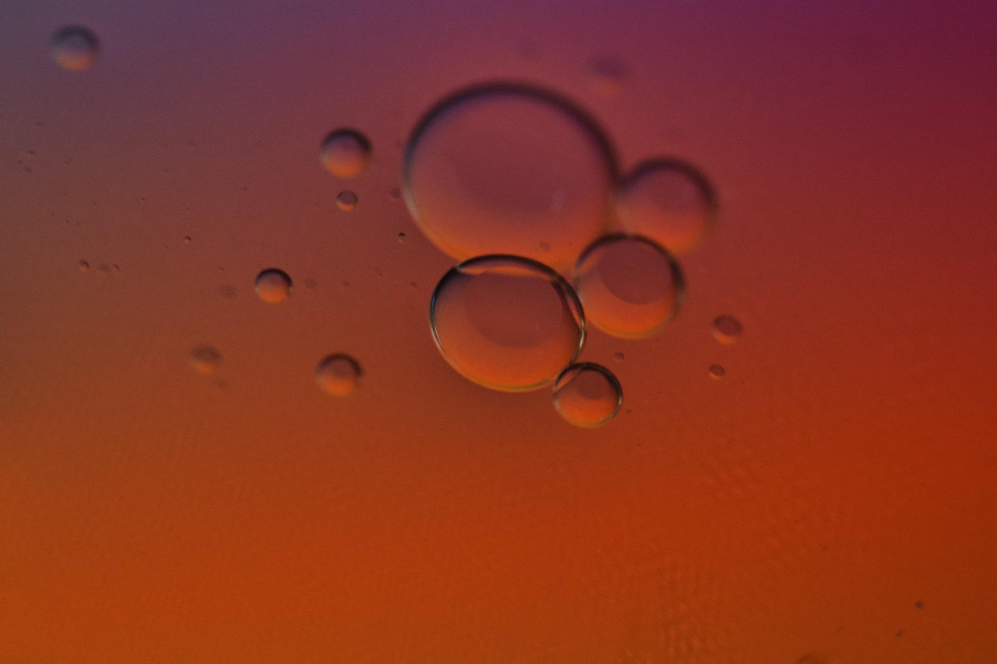 oil by amir