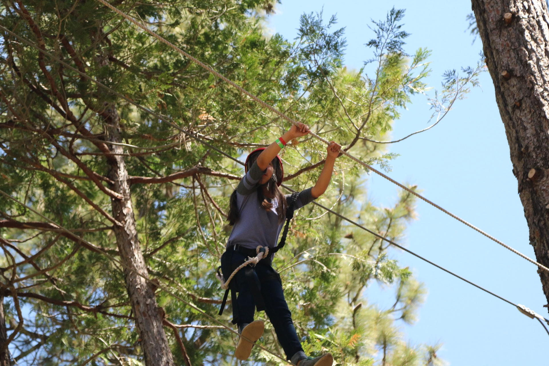 High Adventure Ropes course by Ted Fletcher