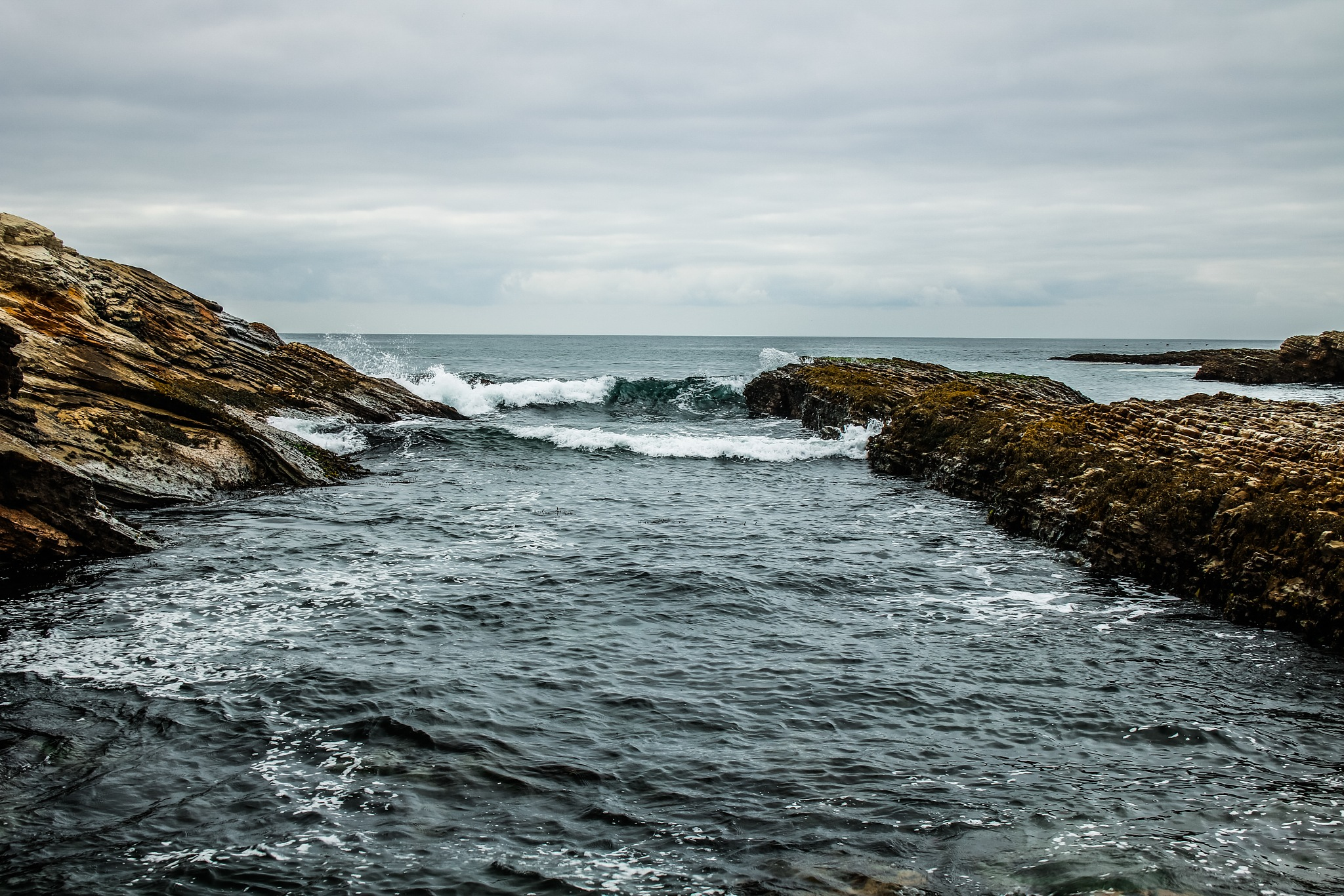 Spooner cove by Ted Fletcher