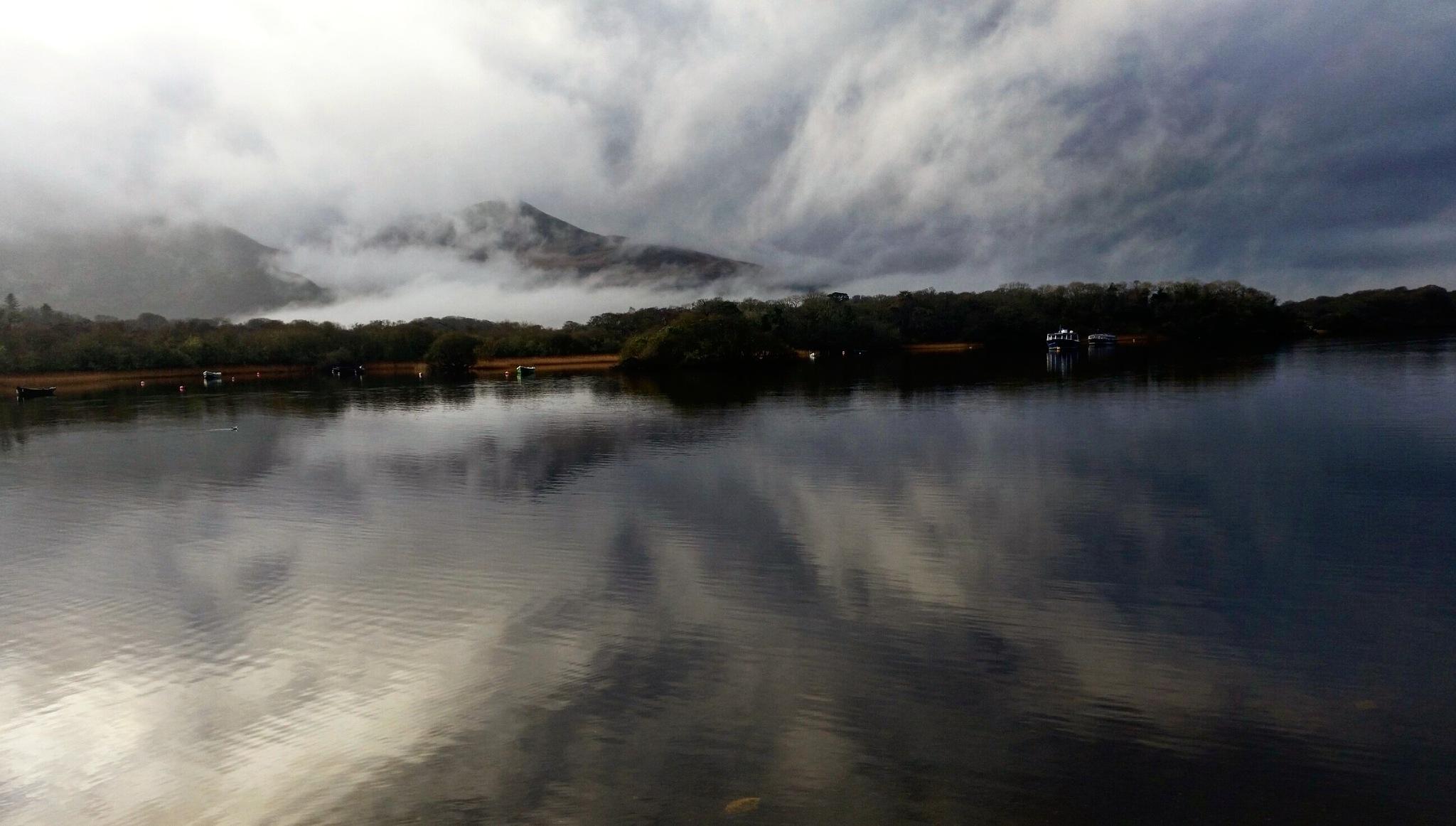 Reflection by Scapes By Jana
