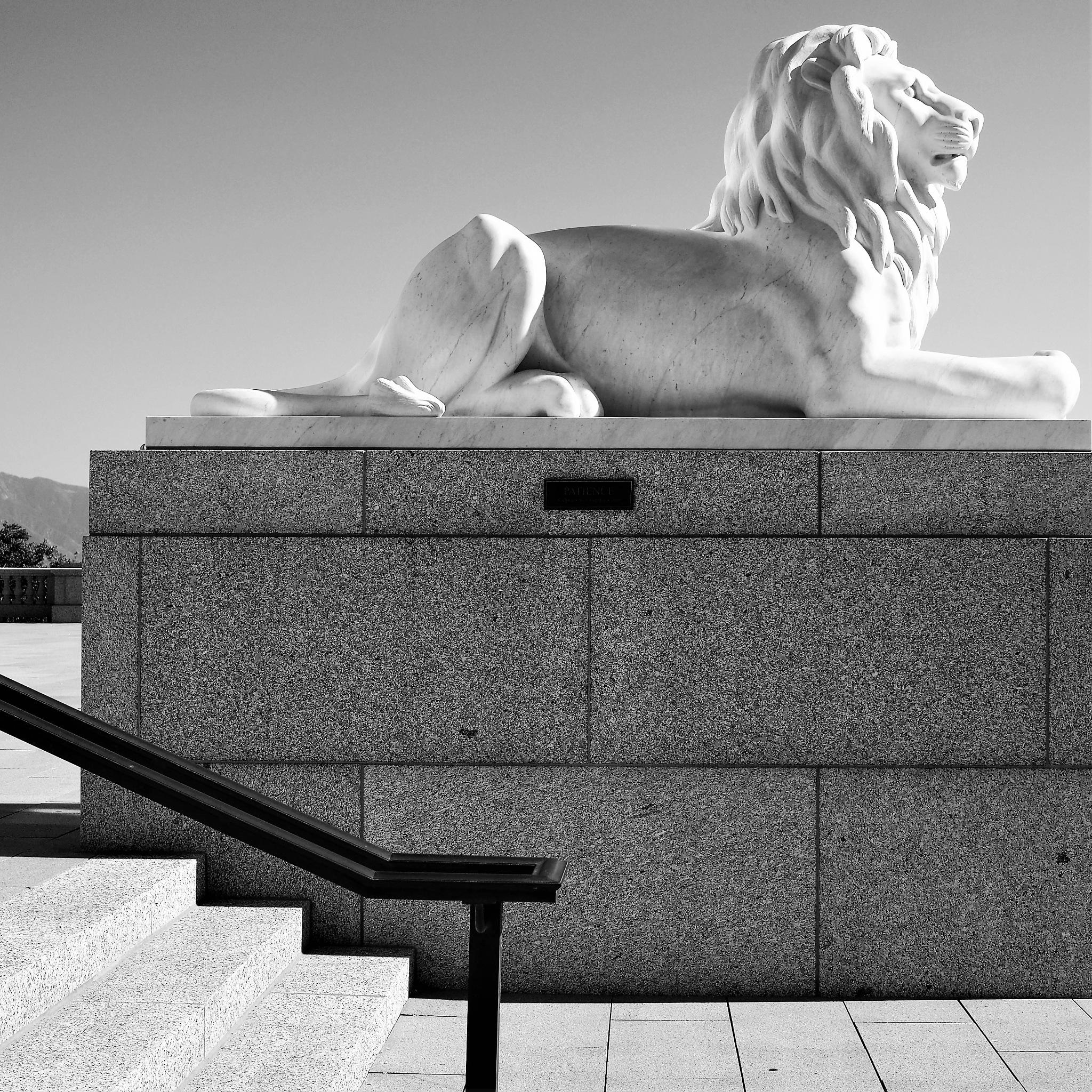 Le lion veille - Utah State Capitol building by Cathy Crégniot