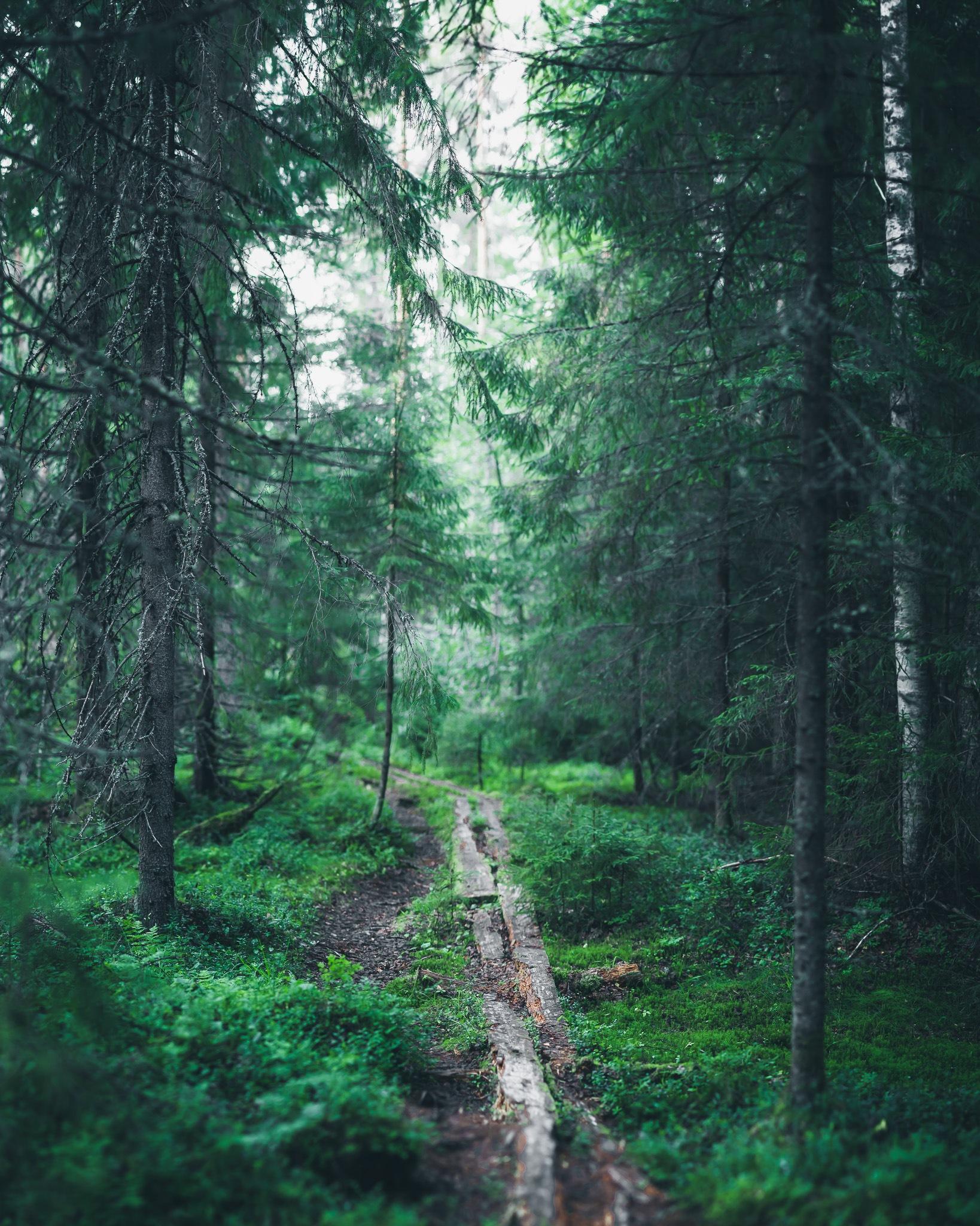 Wonders of the nature by Harri Saastamoinen