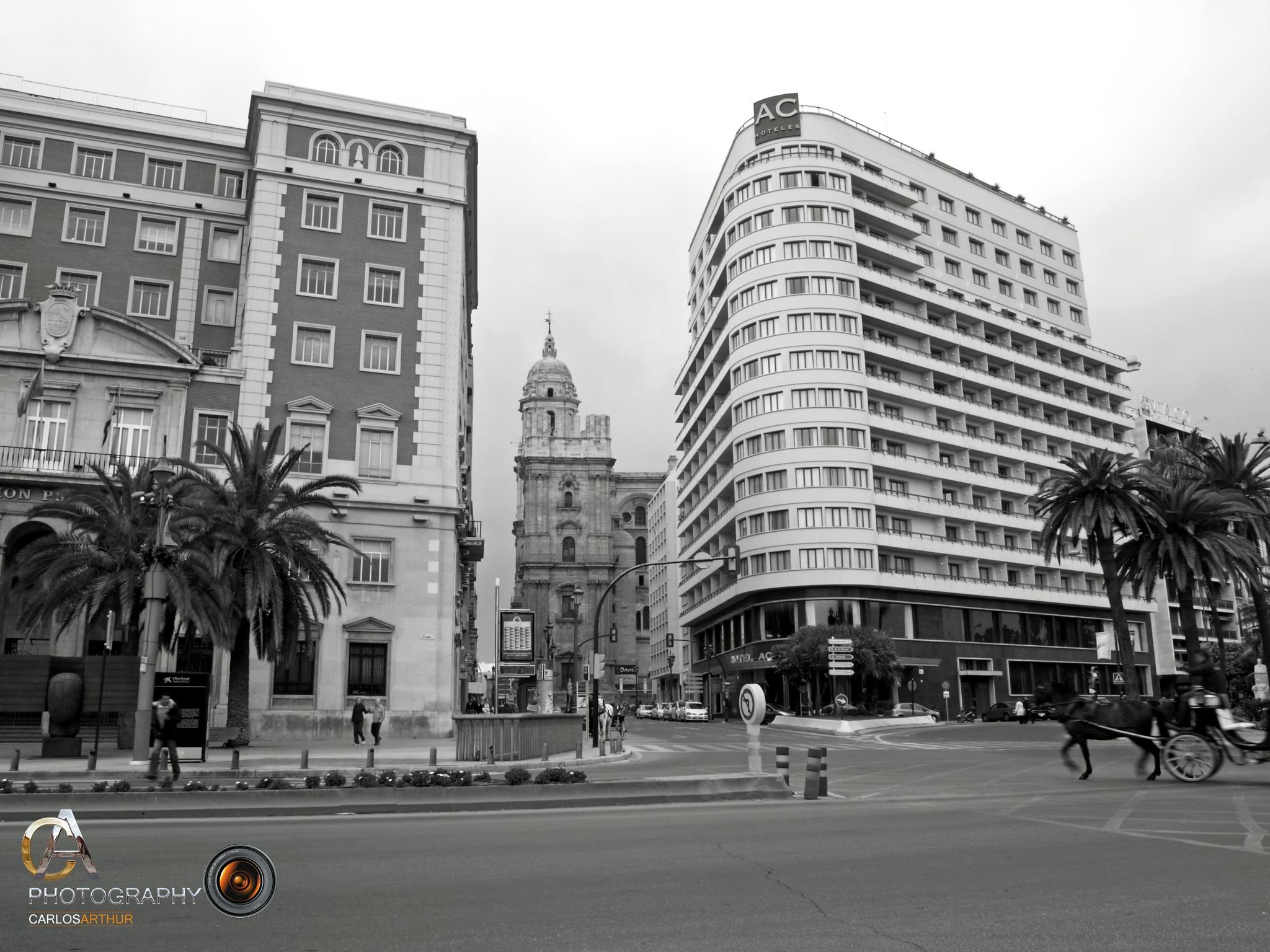 Catedral de Málaga - España by Carlos Arthur Photography