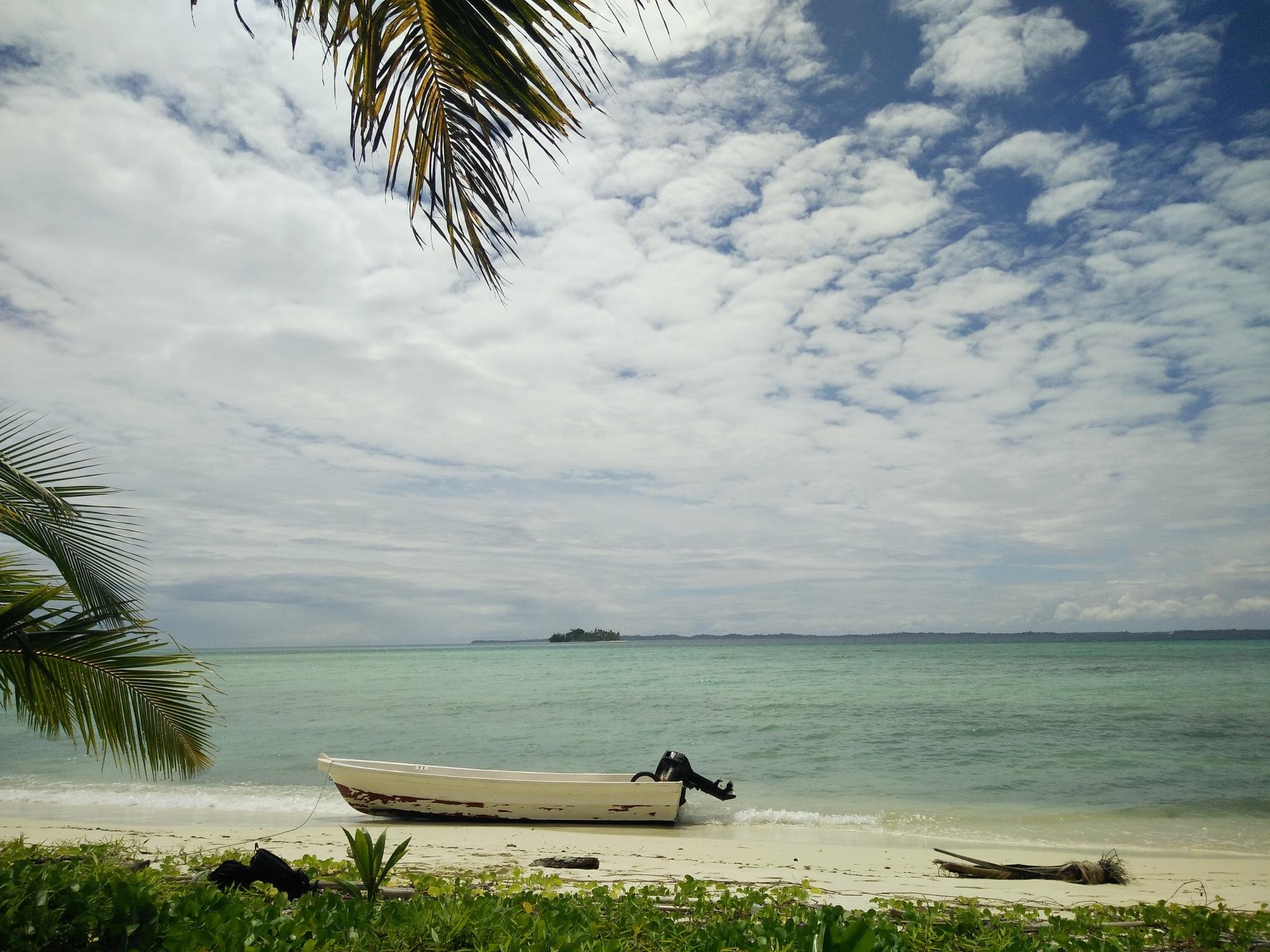 asok island by Elvys